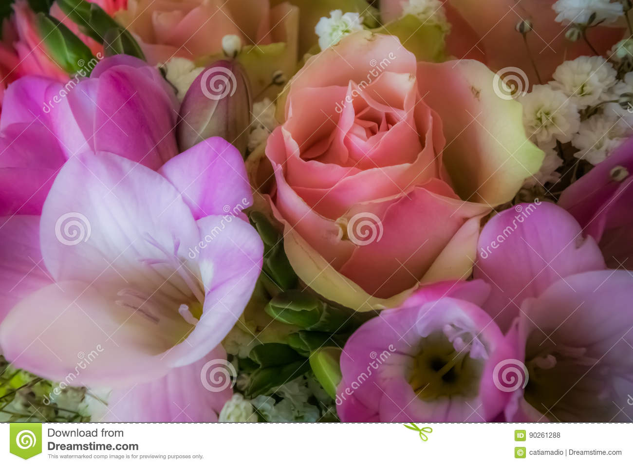 Soft pink flowers background