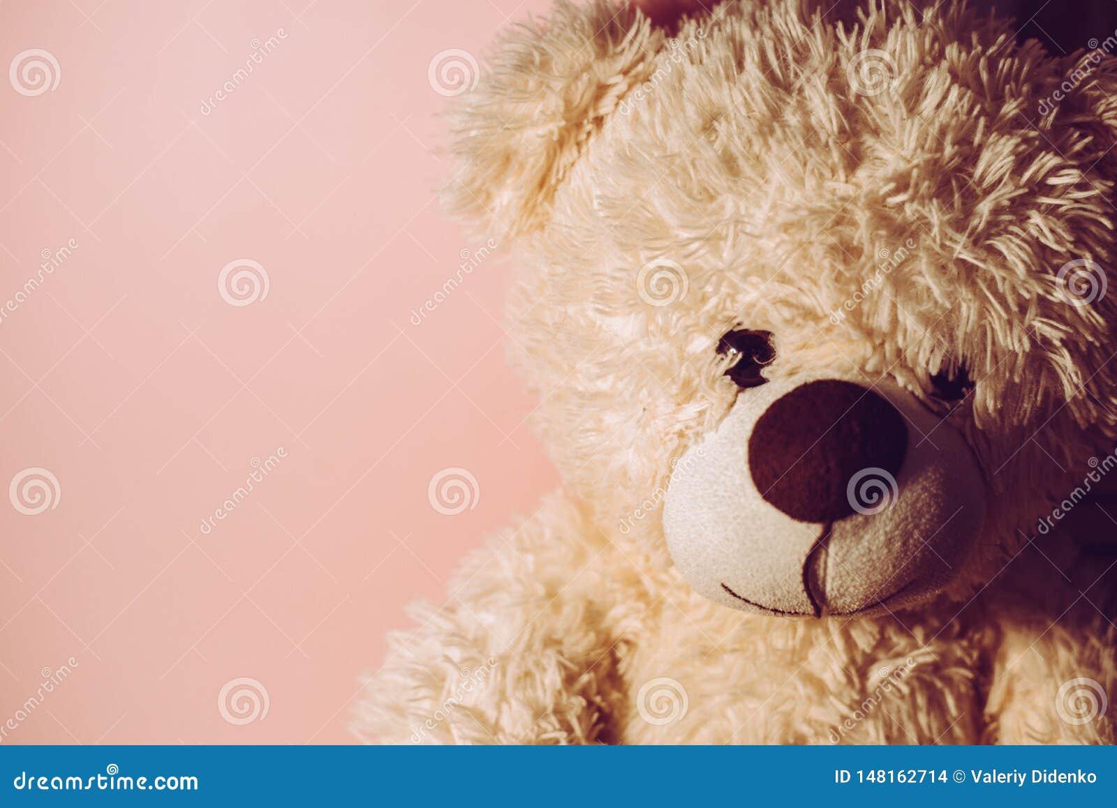 Soft toy `bear`