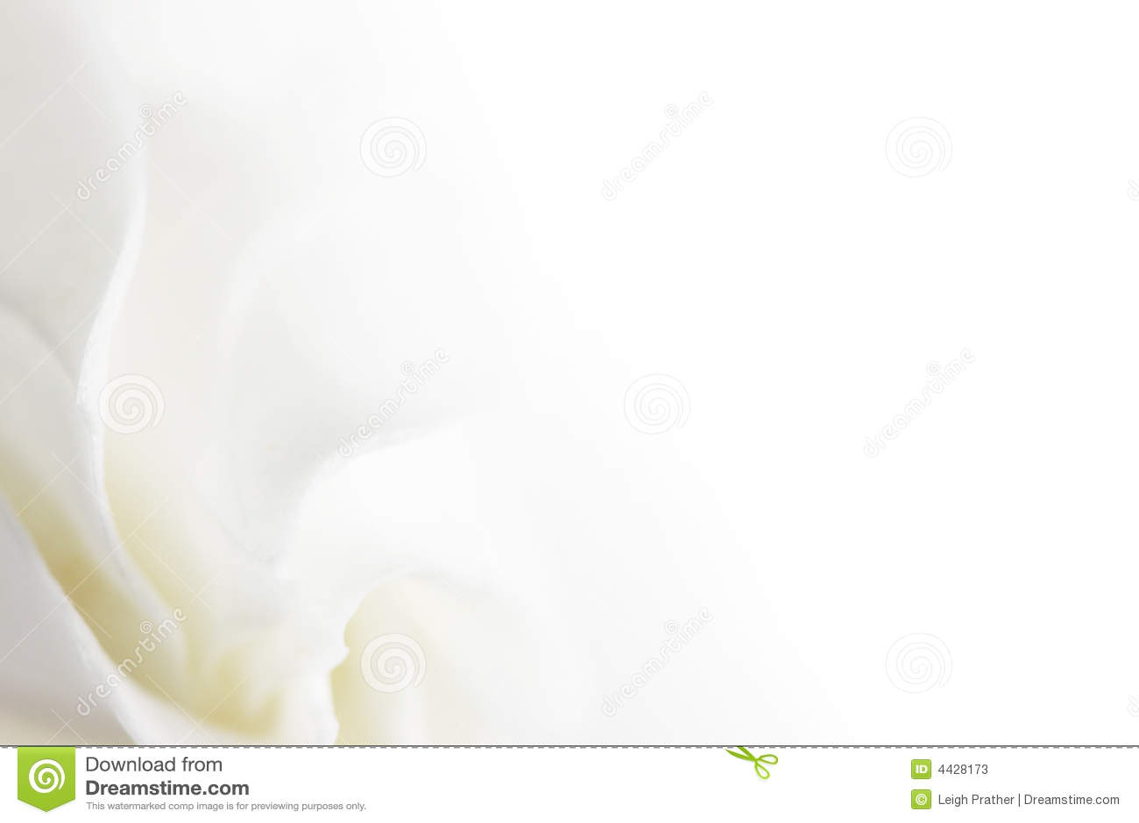 Soft White Flower Background Stock Image Image Of Relaxation