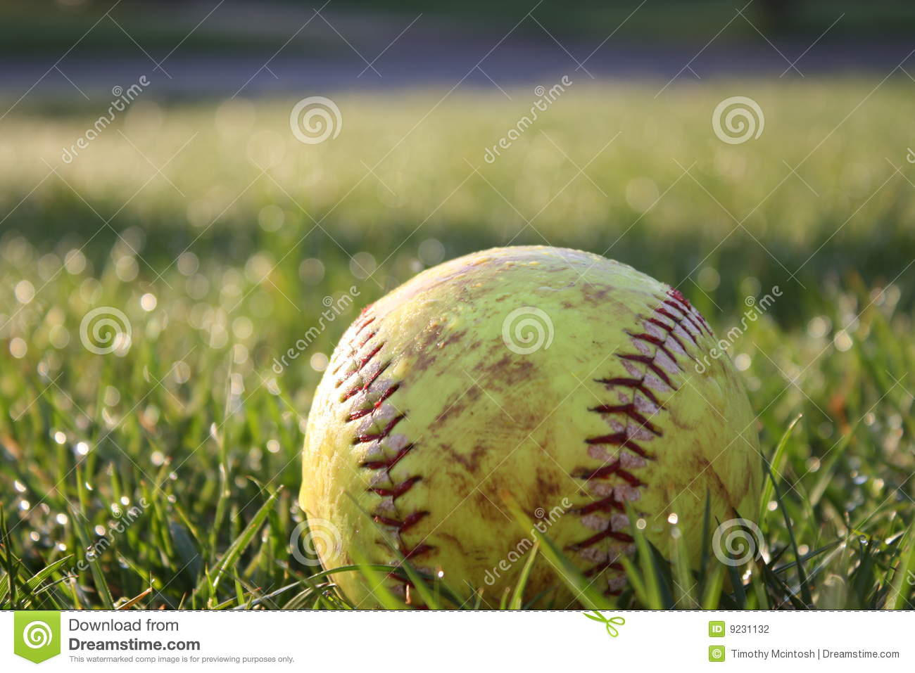 Softball Field Photography