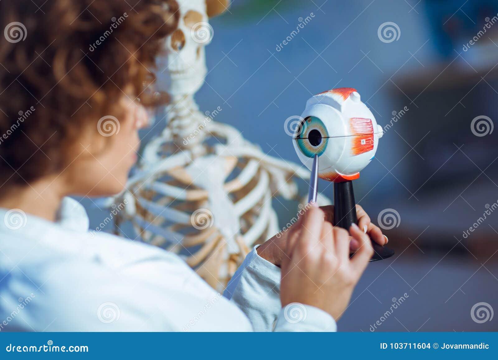Soignez l anatomie de enseignement de femme utilisant le modèle d oeil humain