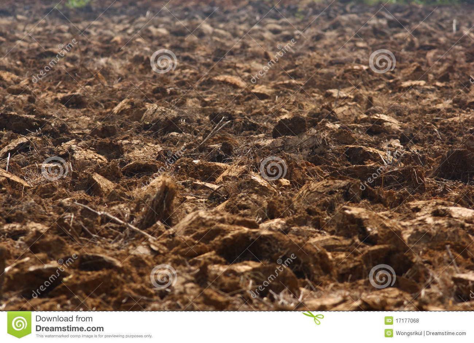Soil royalty free stock photos image 17177068 for The soil 02joy
