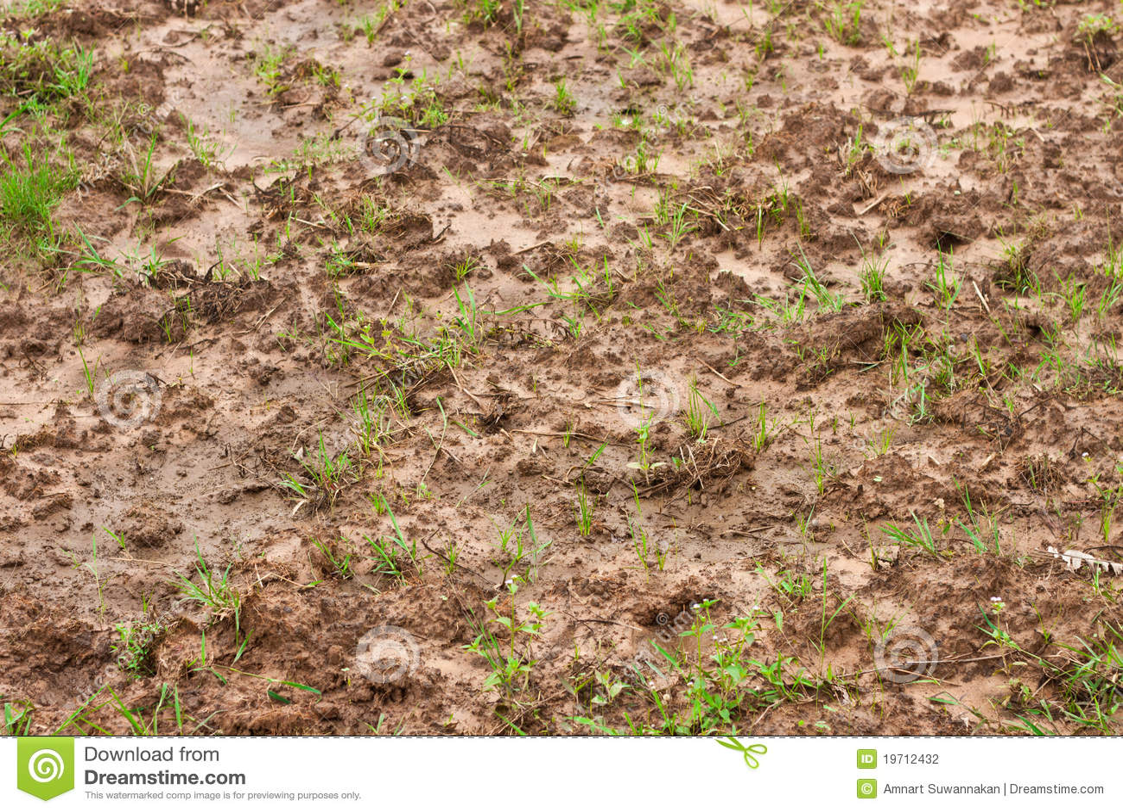 Soil stock photography image 19712432 for The soil 02joy
