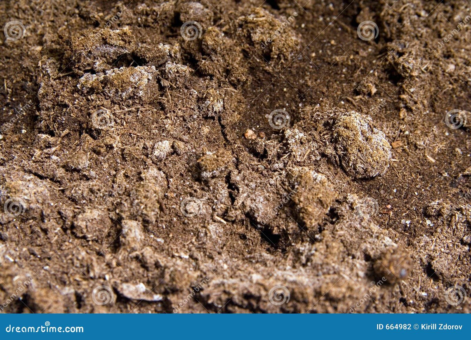 Soil stock photography image 664982 for The soil 02joy