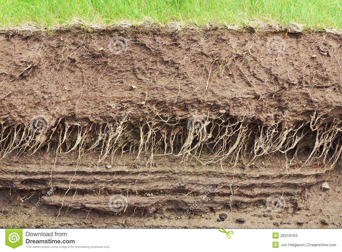 Soil cross section stock photo image of field rocks for Earth soil layers