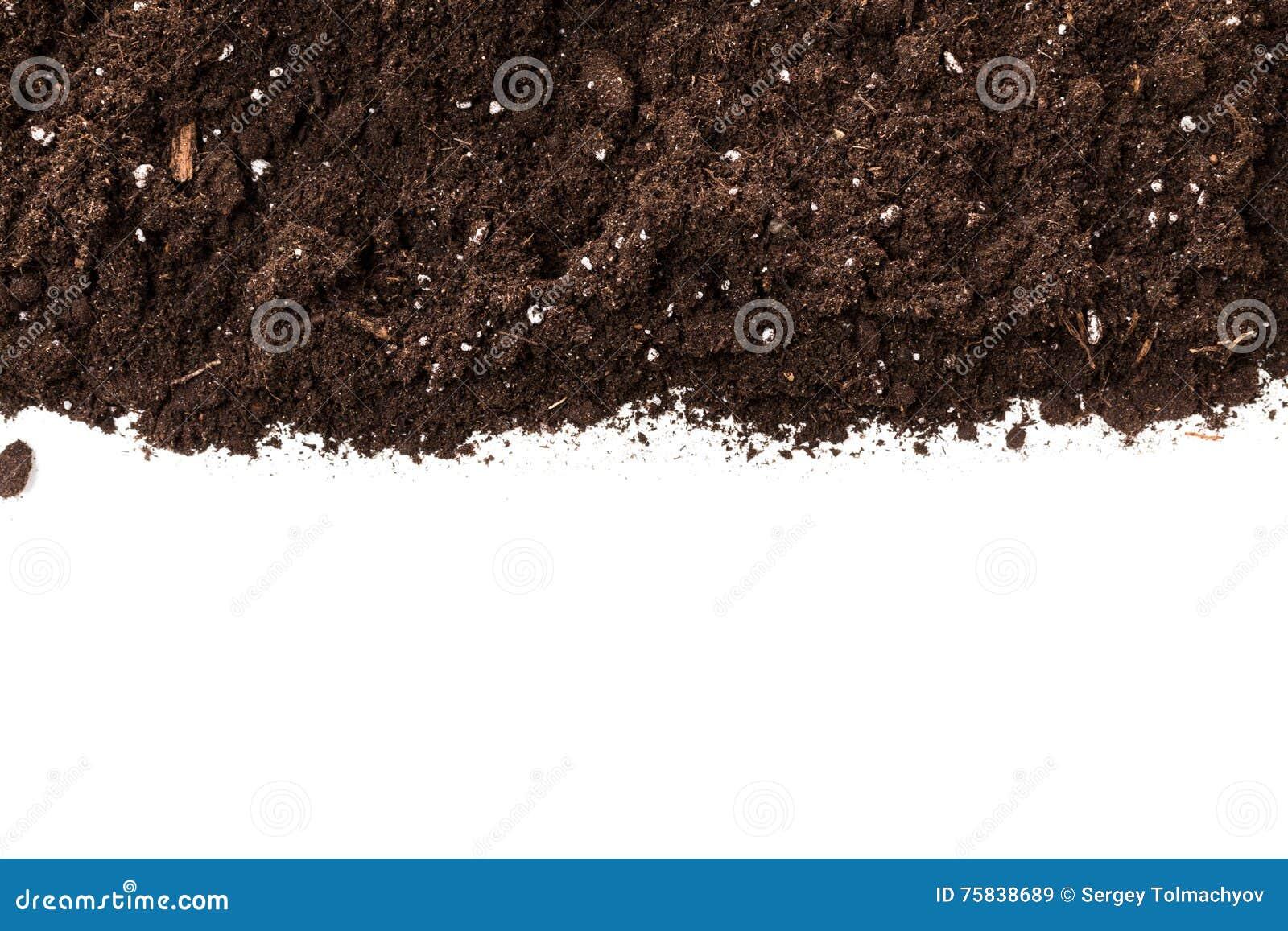 Soil or dirt section