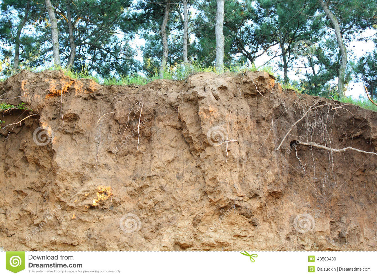 Soil erosion stock photo image 43503480 for Soil environment