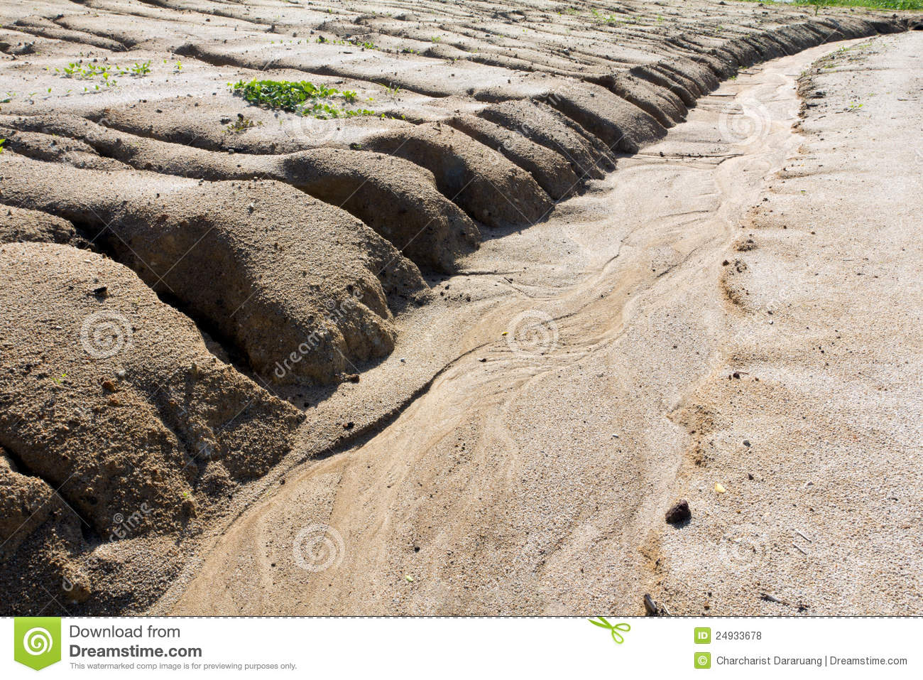 overgrazing major causes of soil erosion When it comes to soil erosion causes,  deforestation caused by overgrazing,  this is the major factor when it comes to water erosion and at times,.