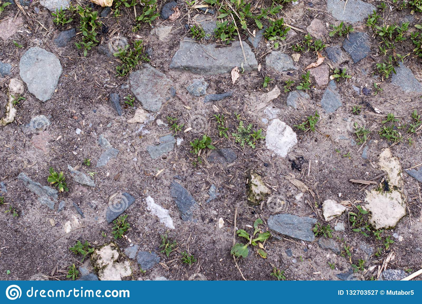 The soil in the flower bed for growing flowers and plants. Land.