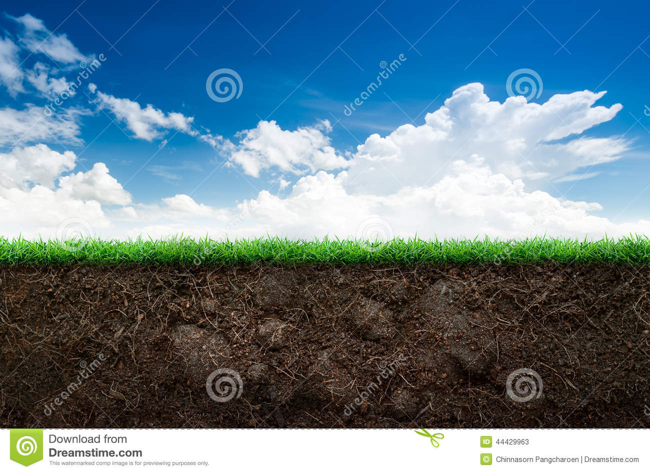 Soil and grass in blue sky stock image image of blade for Soil and green