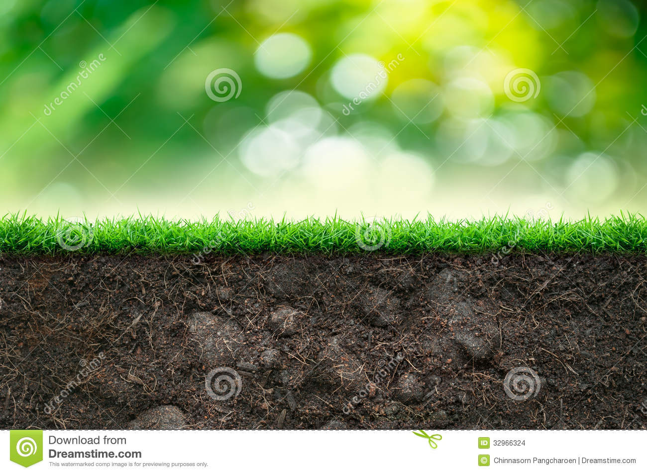 soil and green grass stock images image 32966324
