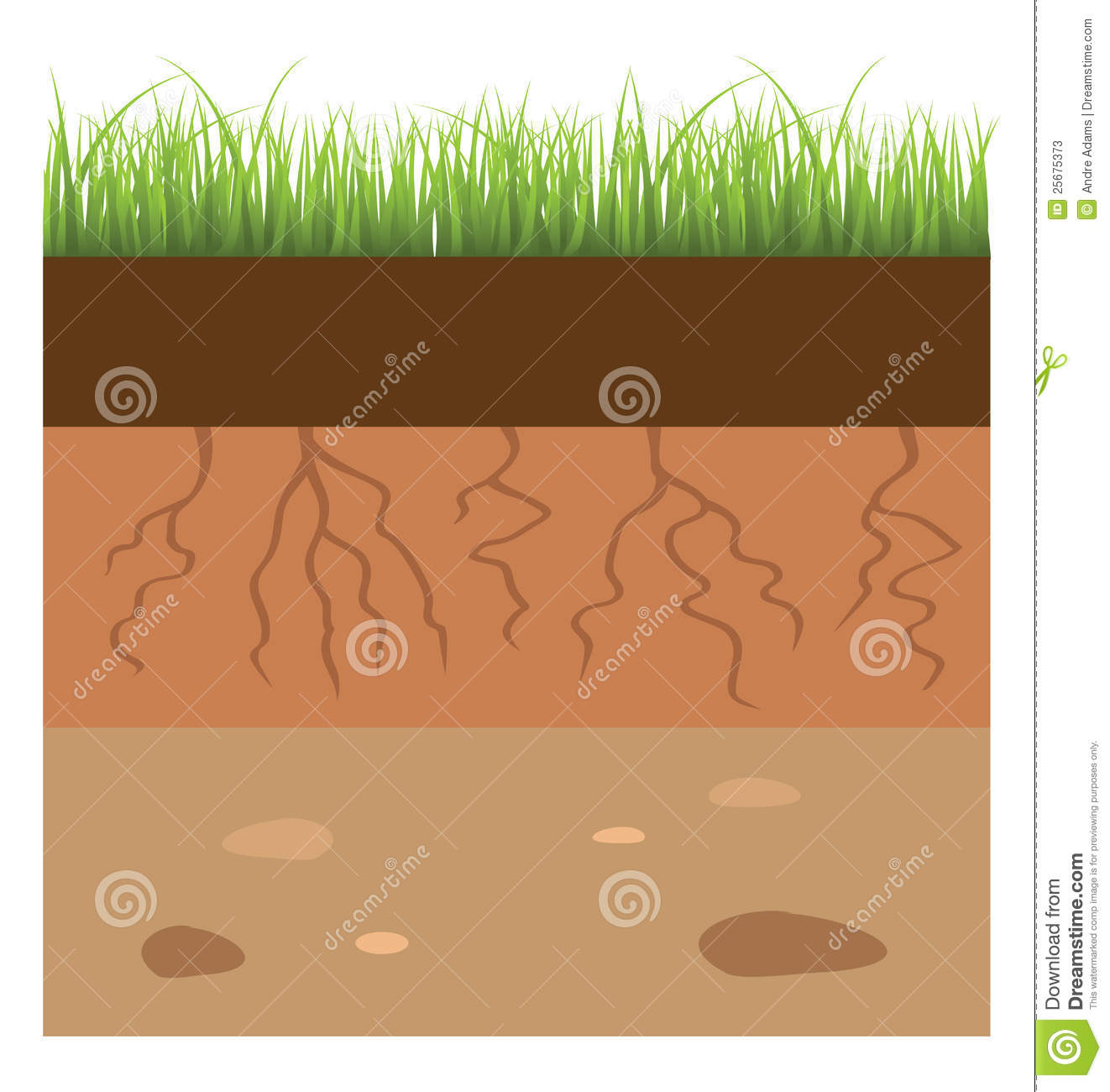Soil layer stock vector. Illustration of fertile, cartoon ...