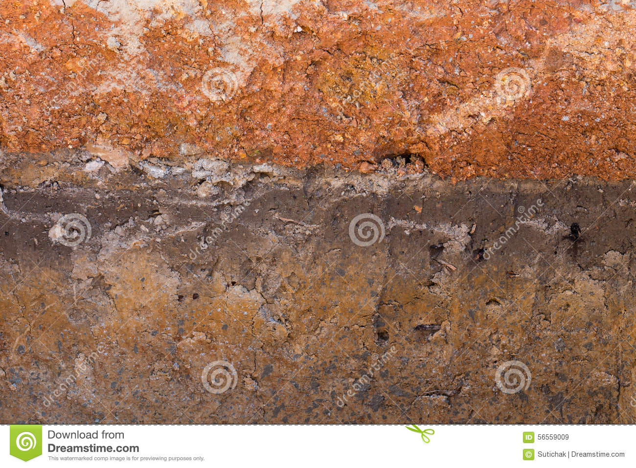 Soil layers in underground earth of science stock image for Earth soil layers
