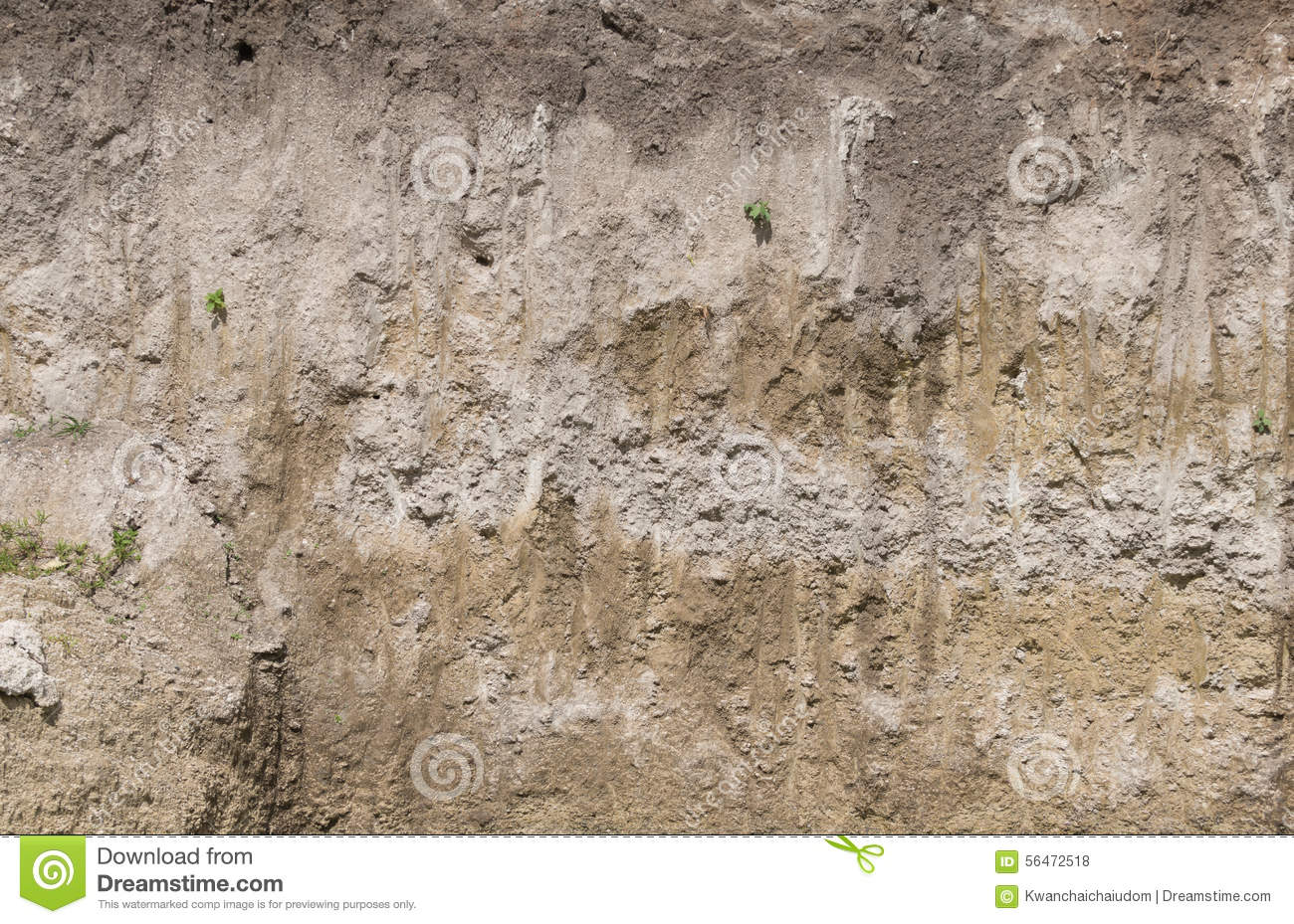 Soil Profile In Cross Section  Stock Photo - Image of