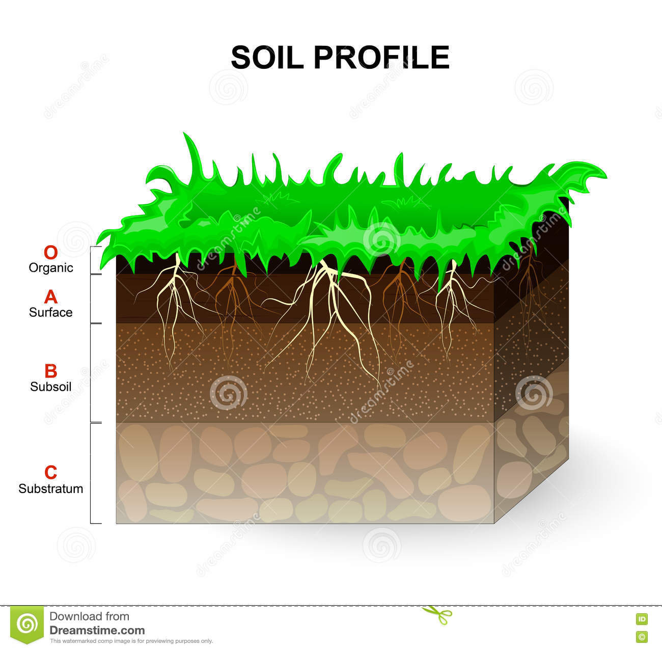 Subsoil cartoons illustrations vector stock images 76 for Soil profile video