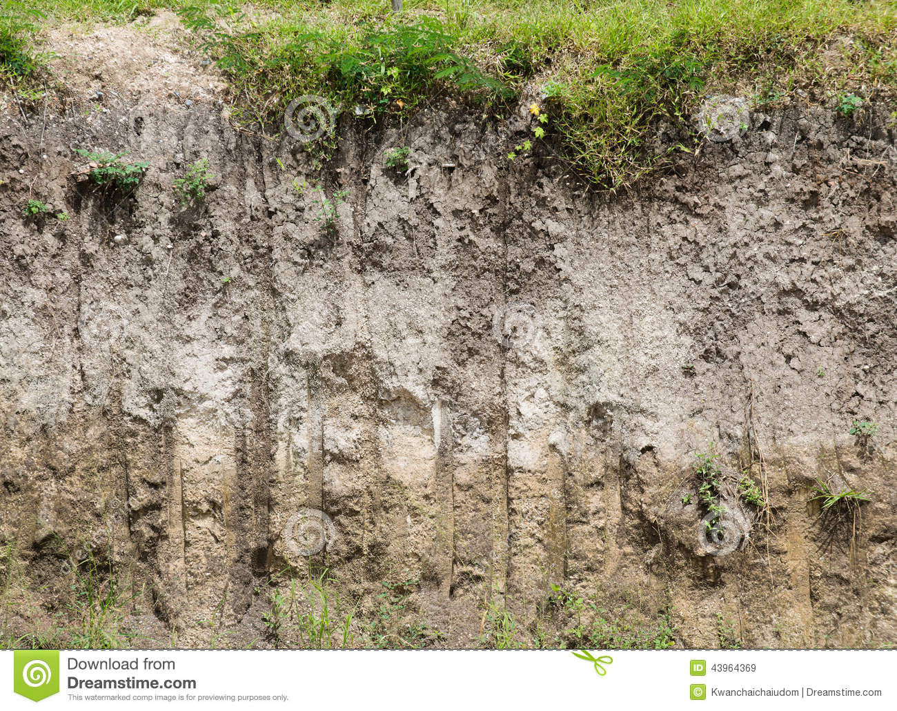 Soil profile stock image image of view rough shale for Soil profile definition