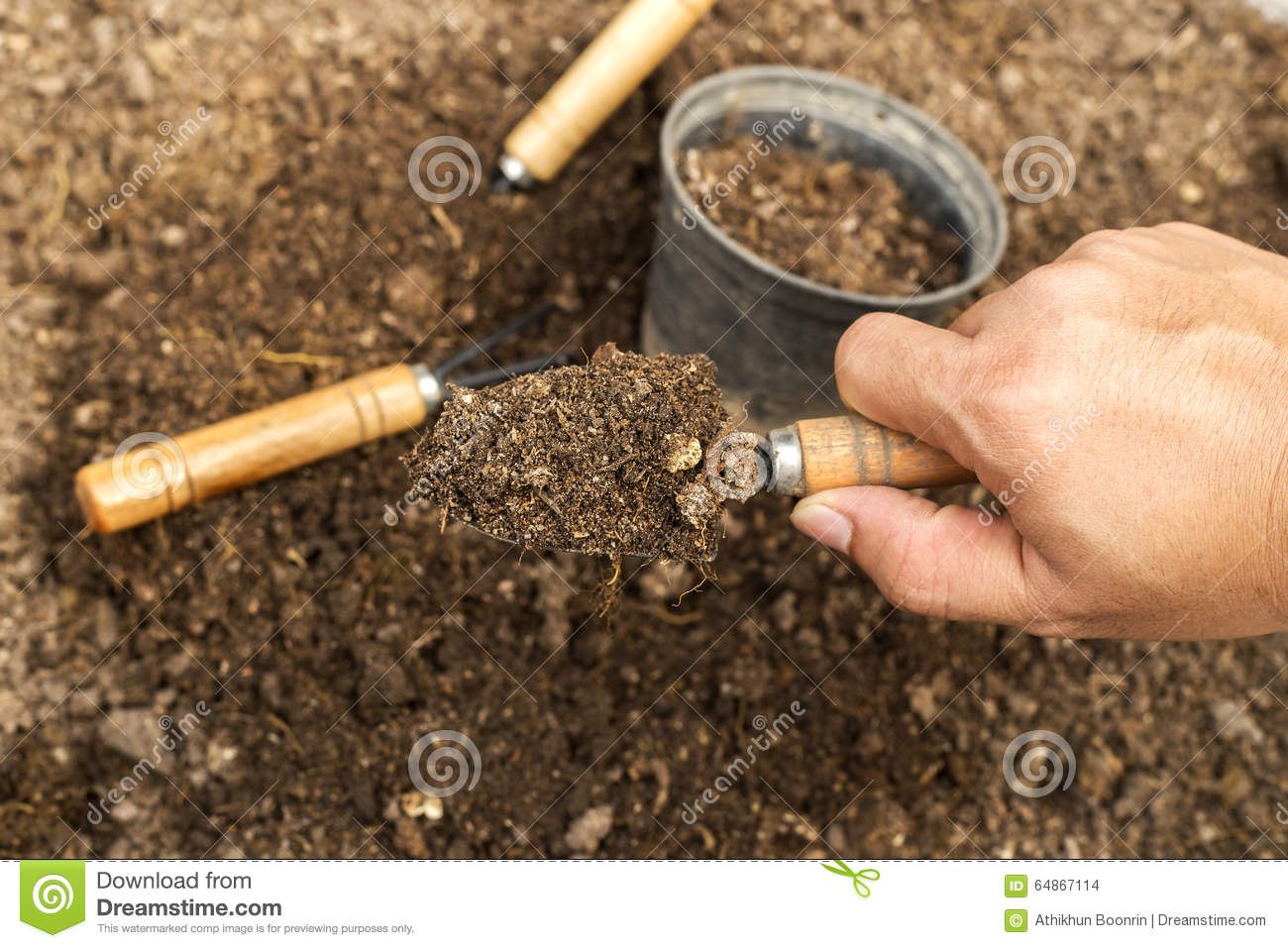 soil in spoon gardening tools and soil stock photo