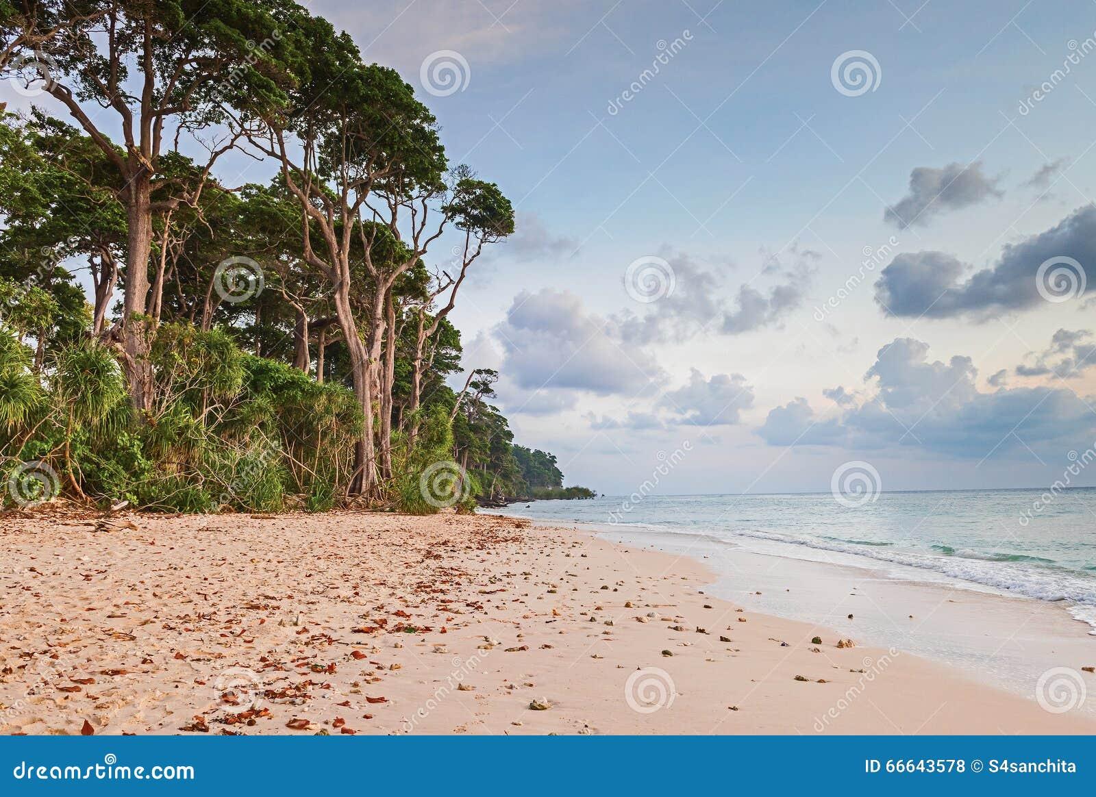 Soirée chez la plage de Laxmanpur, l Andaman et le Nicobar, Inde