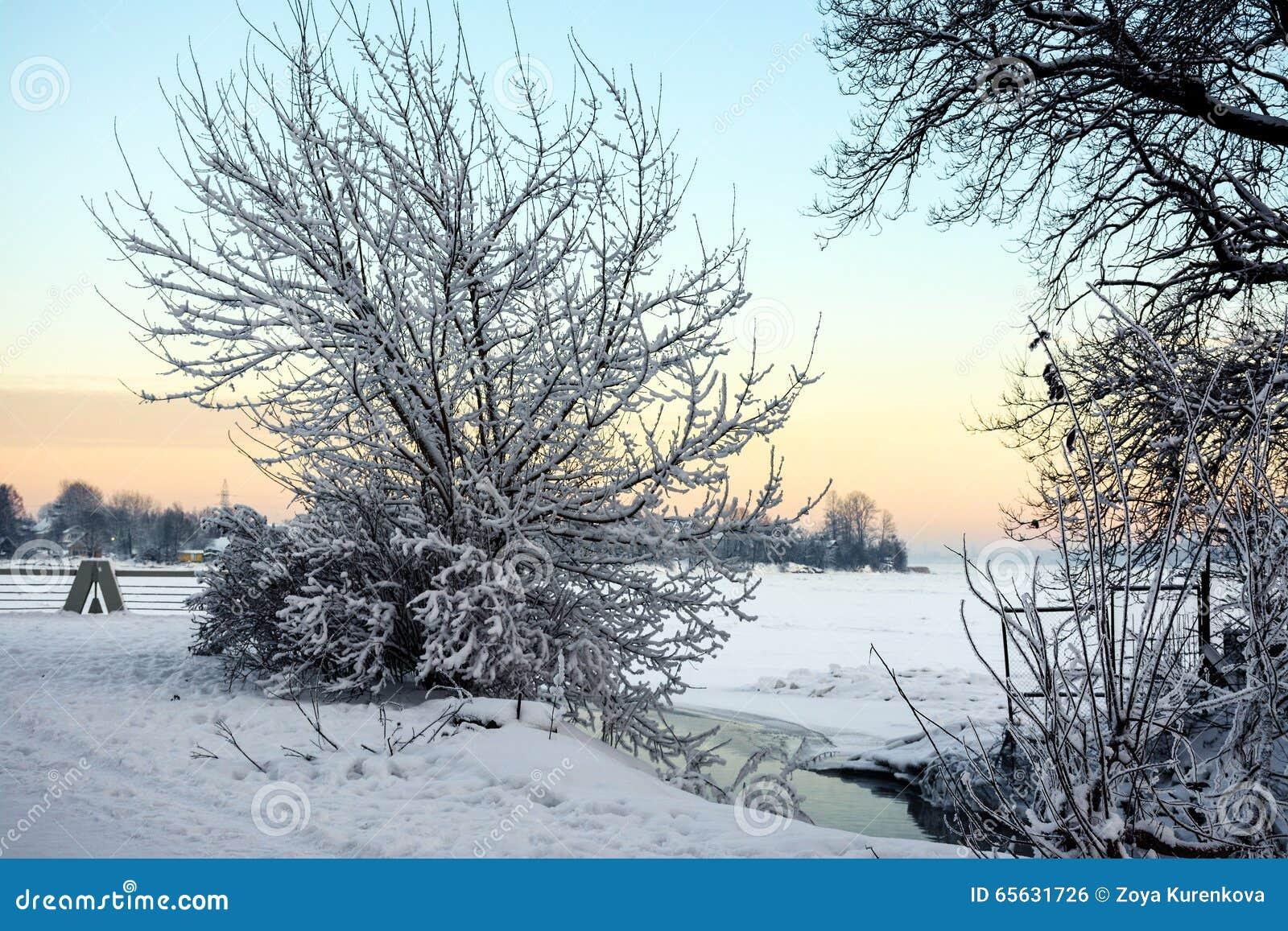Soirée de Frosty January