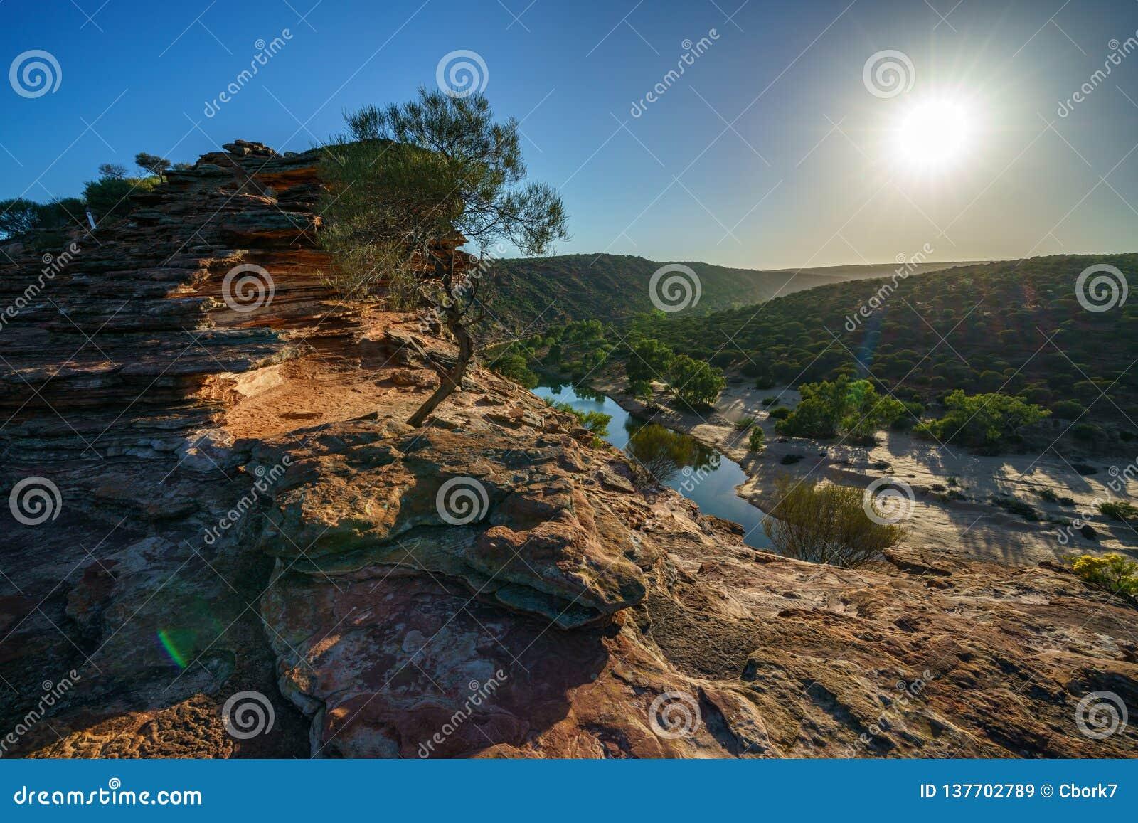 Sol över slingan för naturfönsterögla, kalbarrinationalpark, västra Australien 5