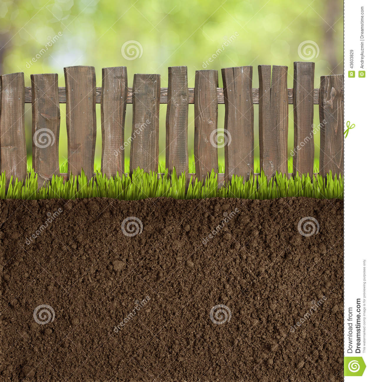 Sol de jardin avec la barri re en bois photo stock image for Barriere de jardin en bois