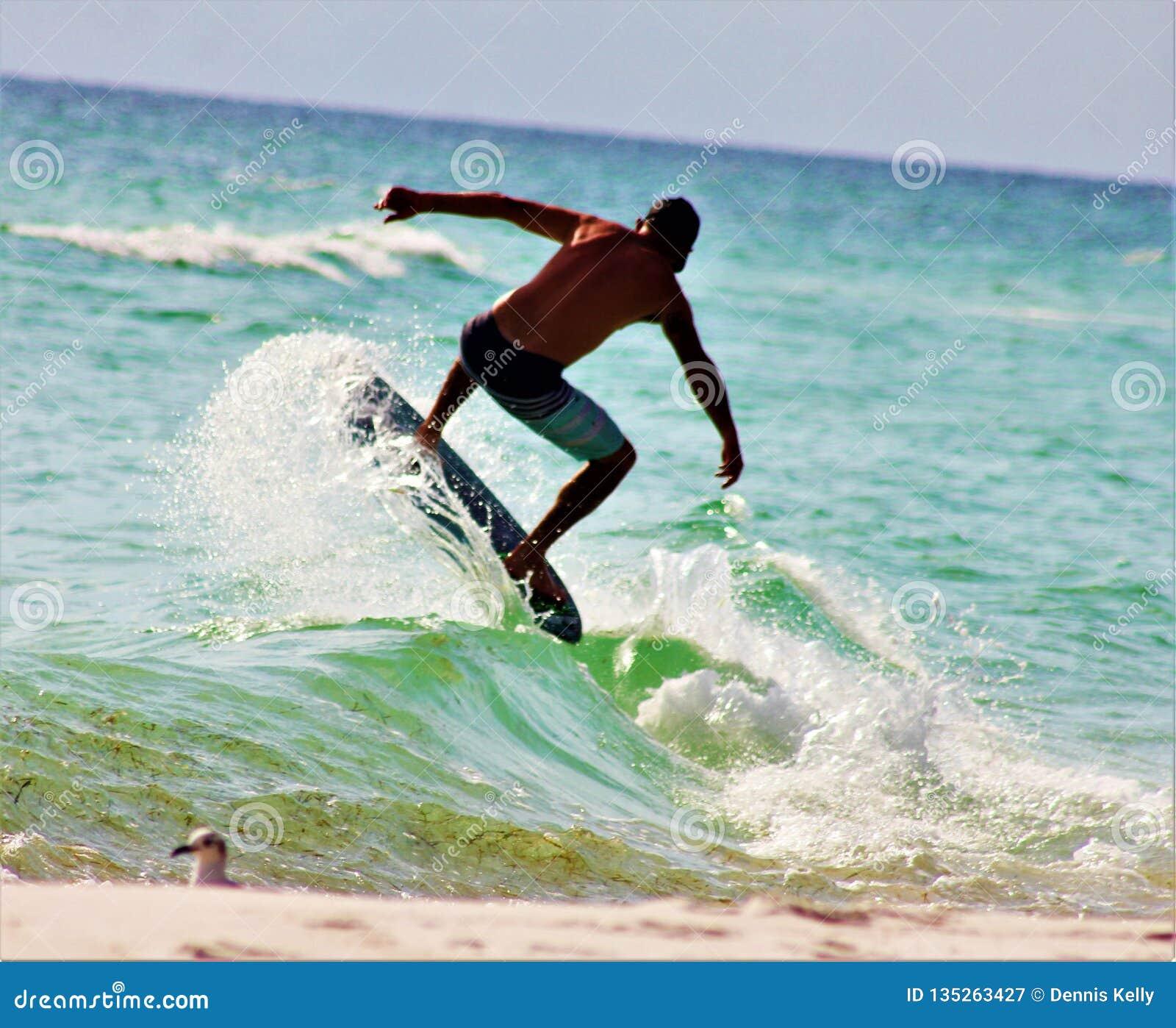 Sol de la playa que fija a la persona que practica surf del Golfo de México