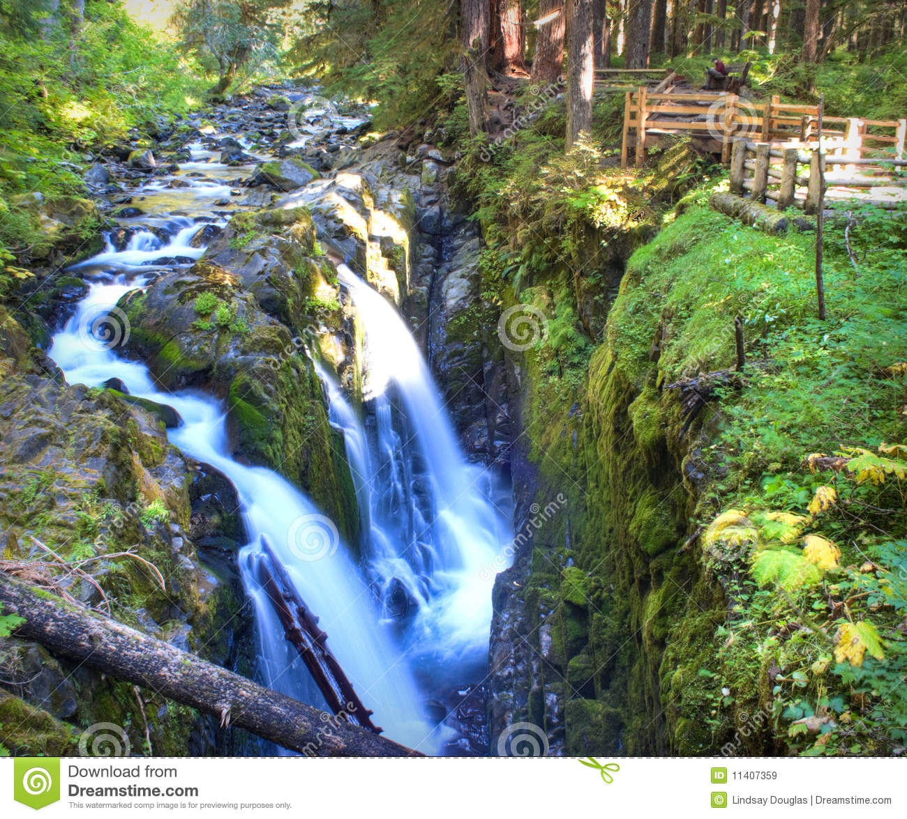 sol duc falls royalty free stock images image 11407359 free clipart olympic rings free olympic clipart borders