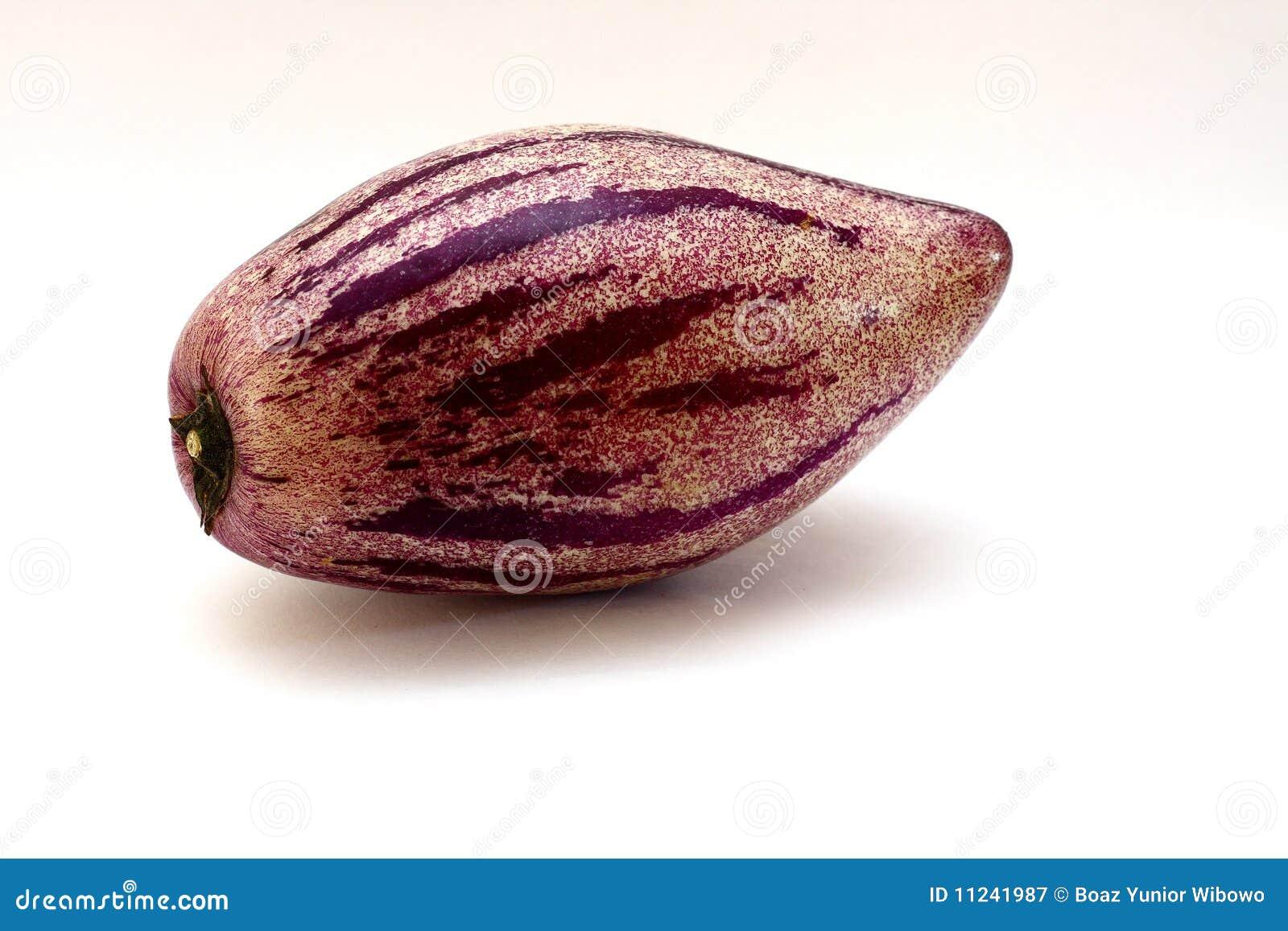 Solanum pepino muricatum