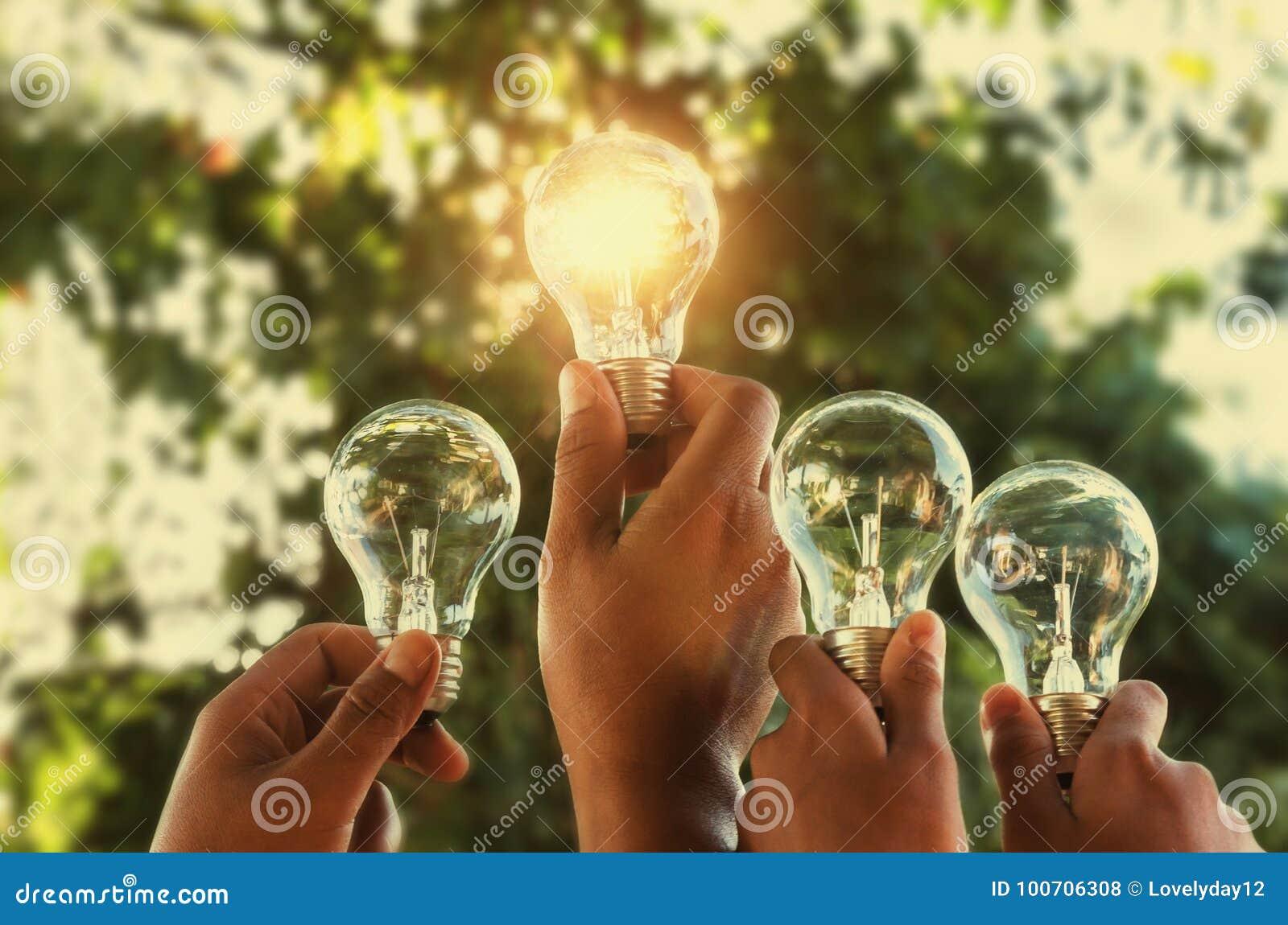 solar energy concept hand group holding light bulb