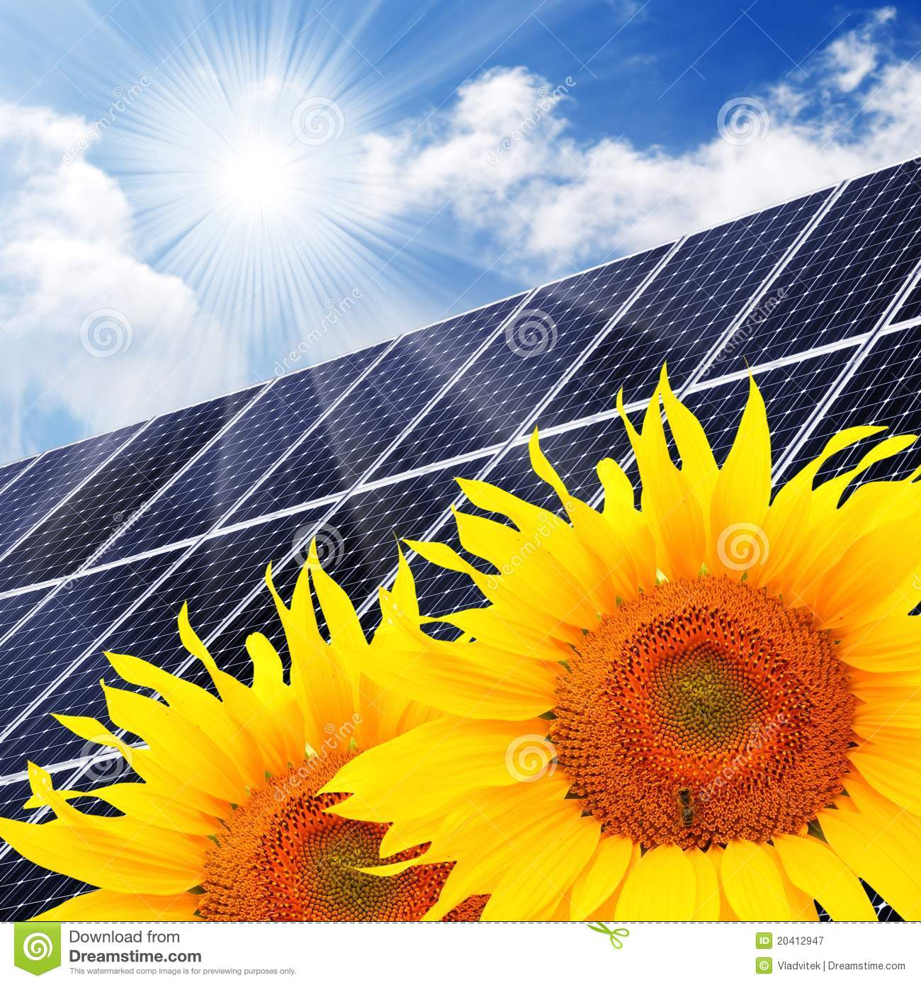 Solar Energy Panel And Sunflowers Stock Illustration