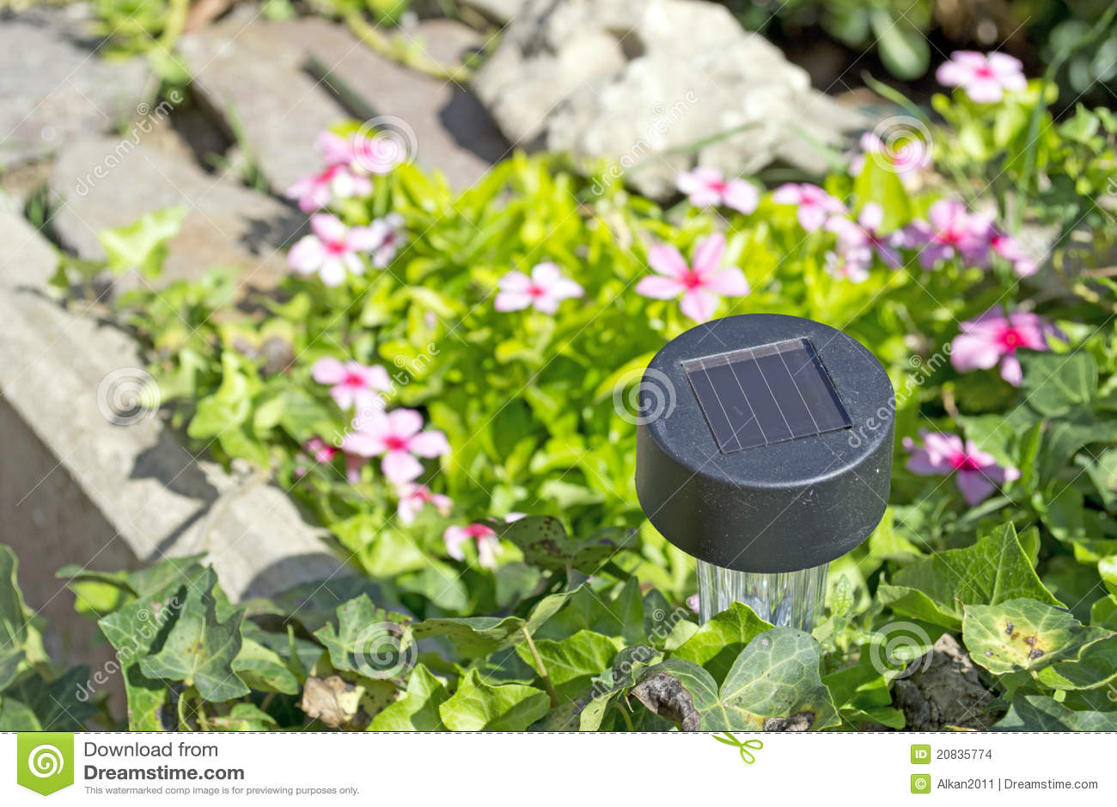 solar garden light stock images image 20835774. Black Bedroom Furniture Sets. Home Design Ideas