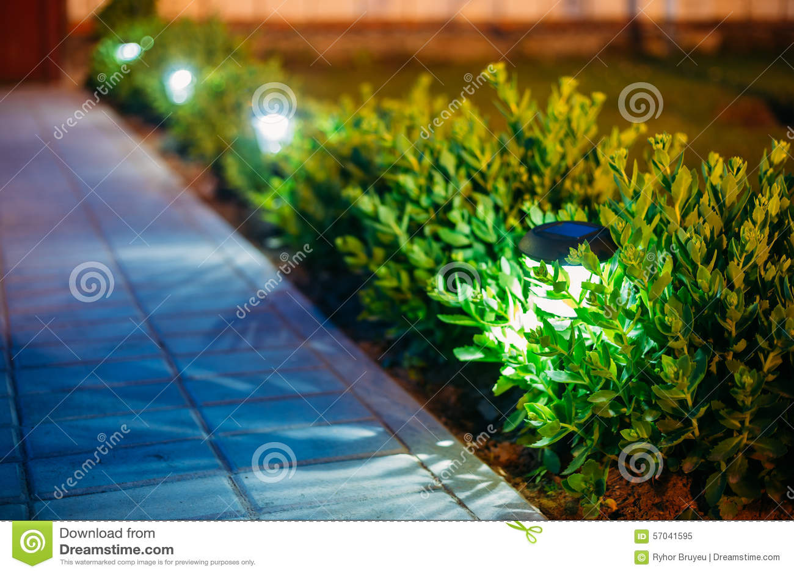 Solar garden light lanterns in flower bed garden stock - Led solar jardin ...