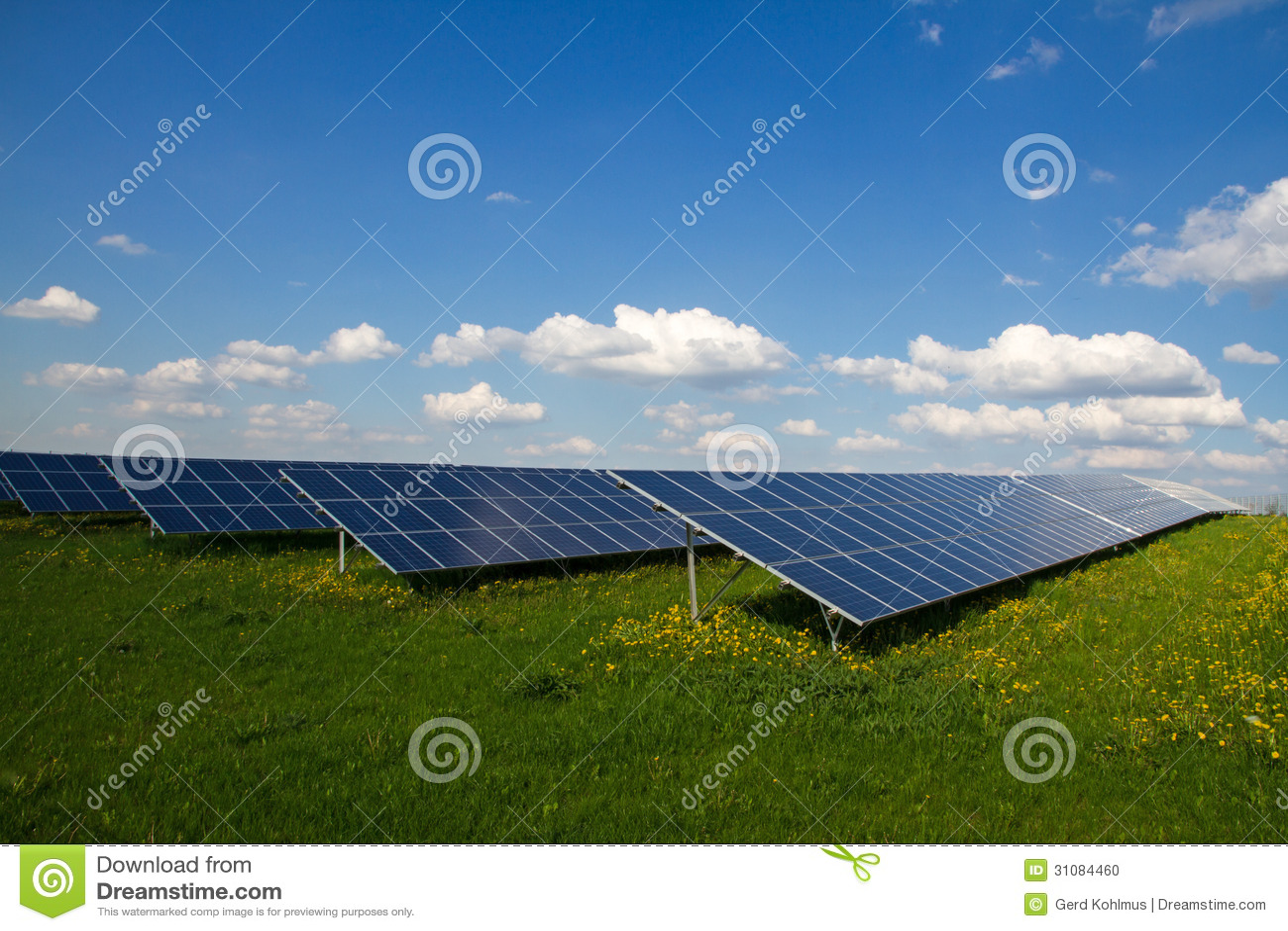 Solar Panel Farm Stock Photo Image Of Yellow Ecology