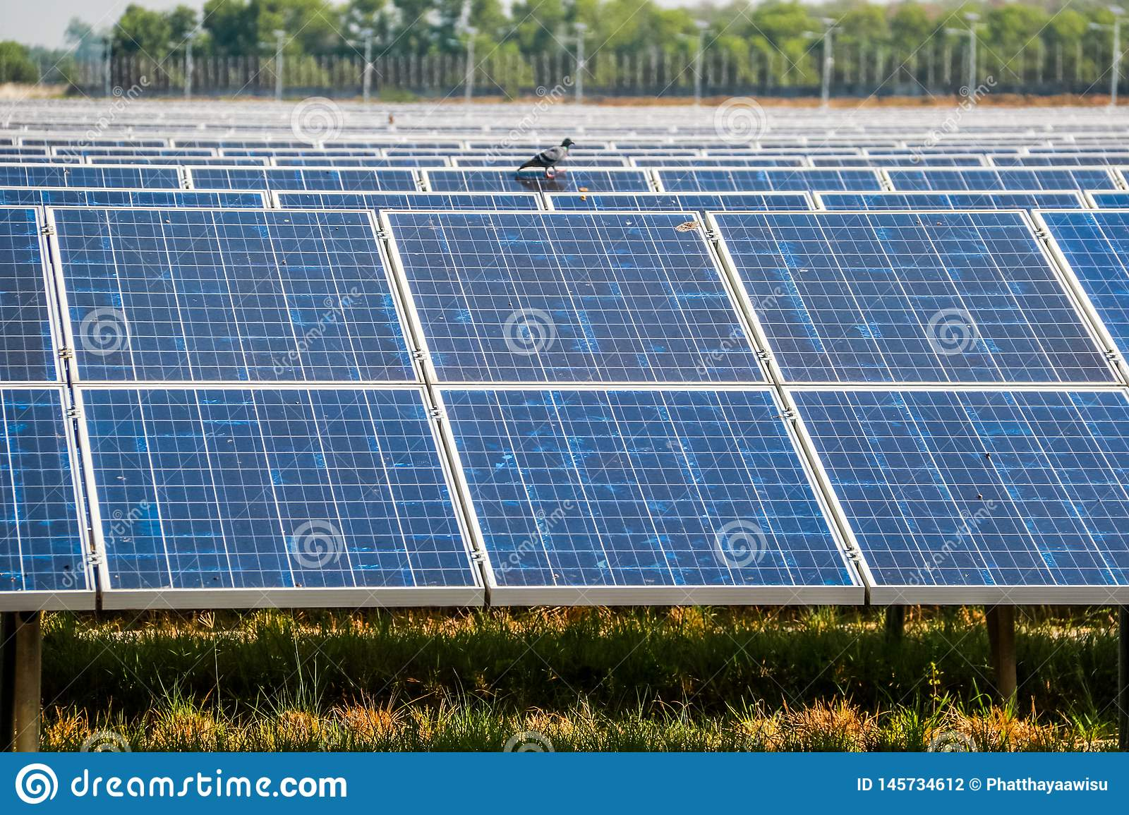 Solar panel generating electricity clean energy