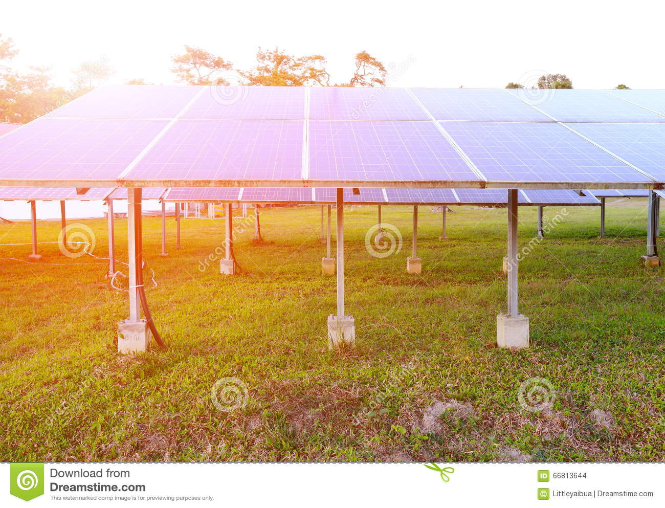 Solar panel produces renewable energy,friendly energy from the