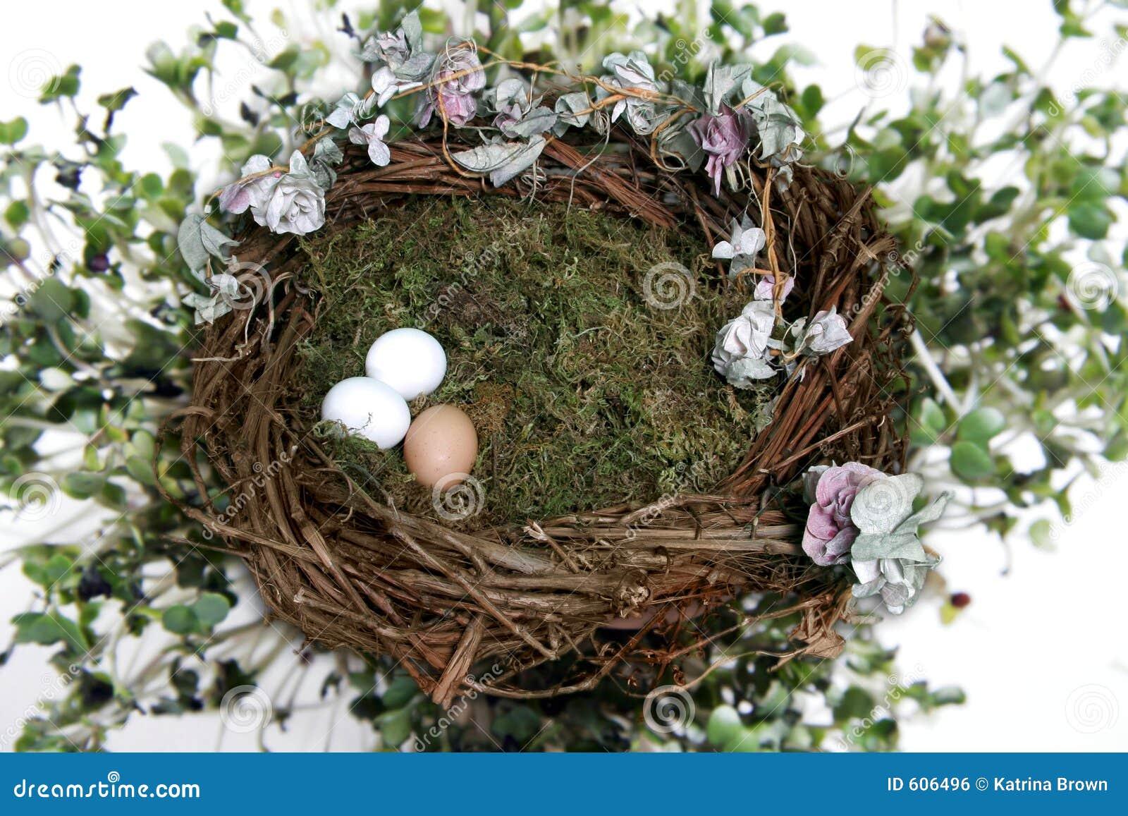 Solated op het Witte Nest van de Vogel van de Fantasie met Steun de van Achtergrond eieren van de Foto (neem Uw Cliënt op!)