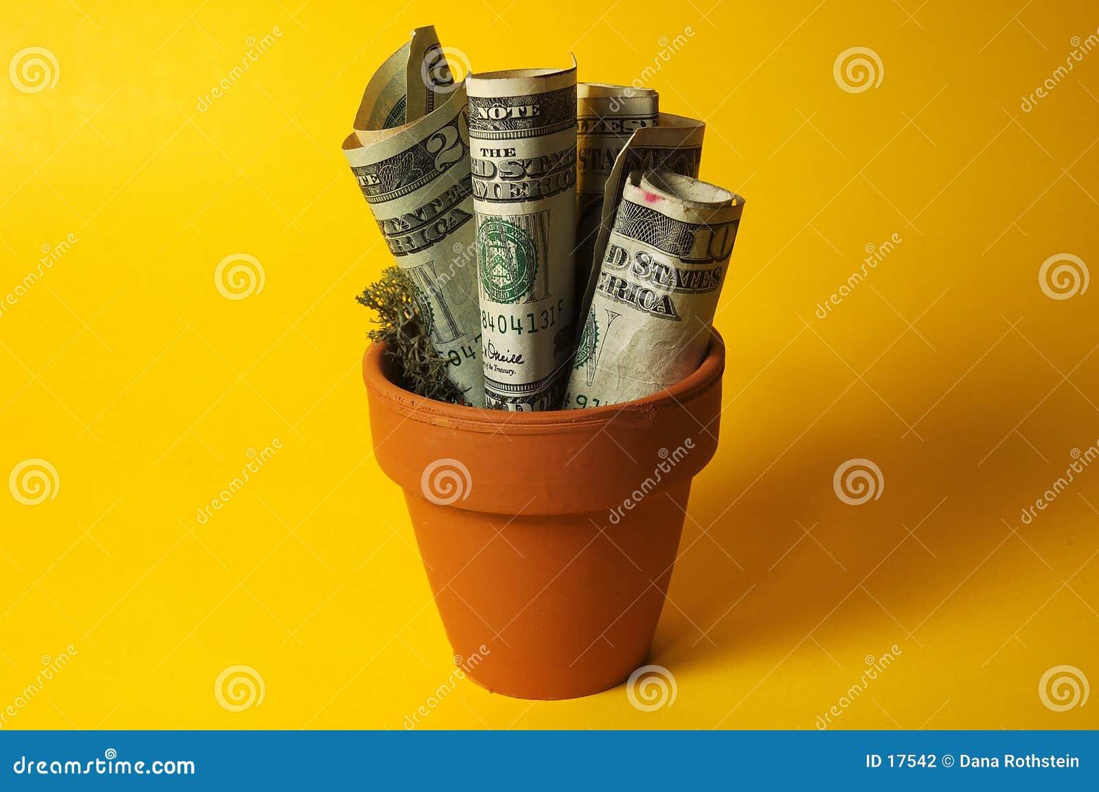 Soldi conservati in vaso