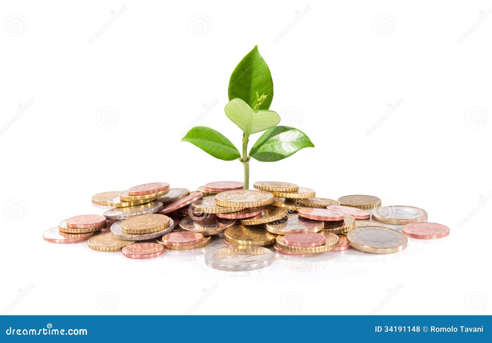 Soldi e pianta - nuovo affare di finanza