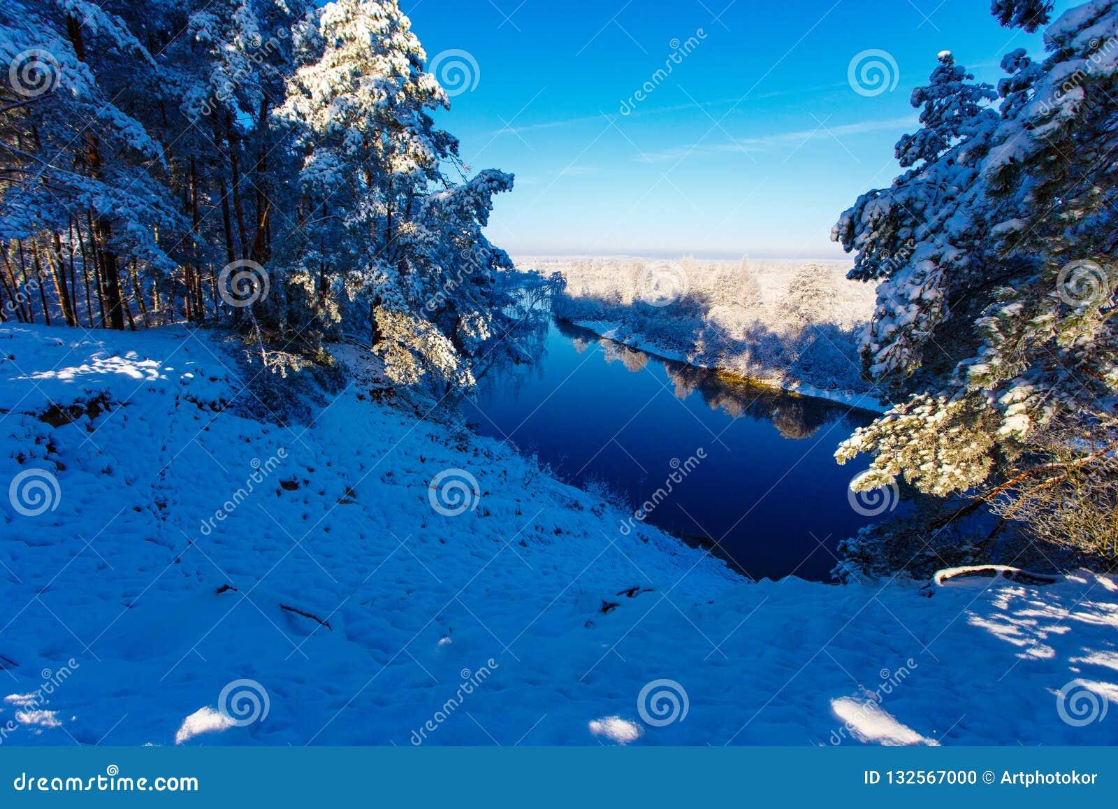 Sole di abbagliamento che splende sopra la foresta nevosa
