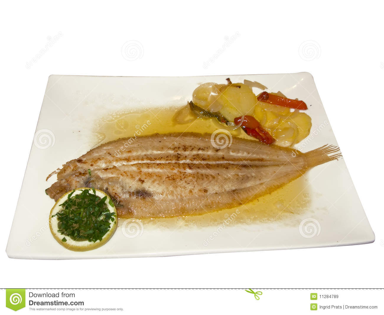 Sole fish stock image image of meal product diet sole for Sole fish nutrition