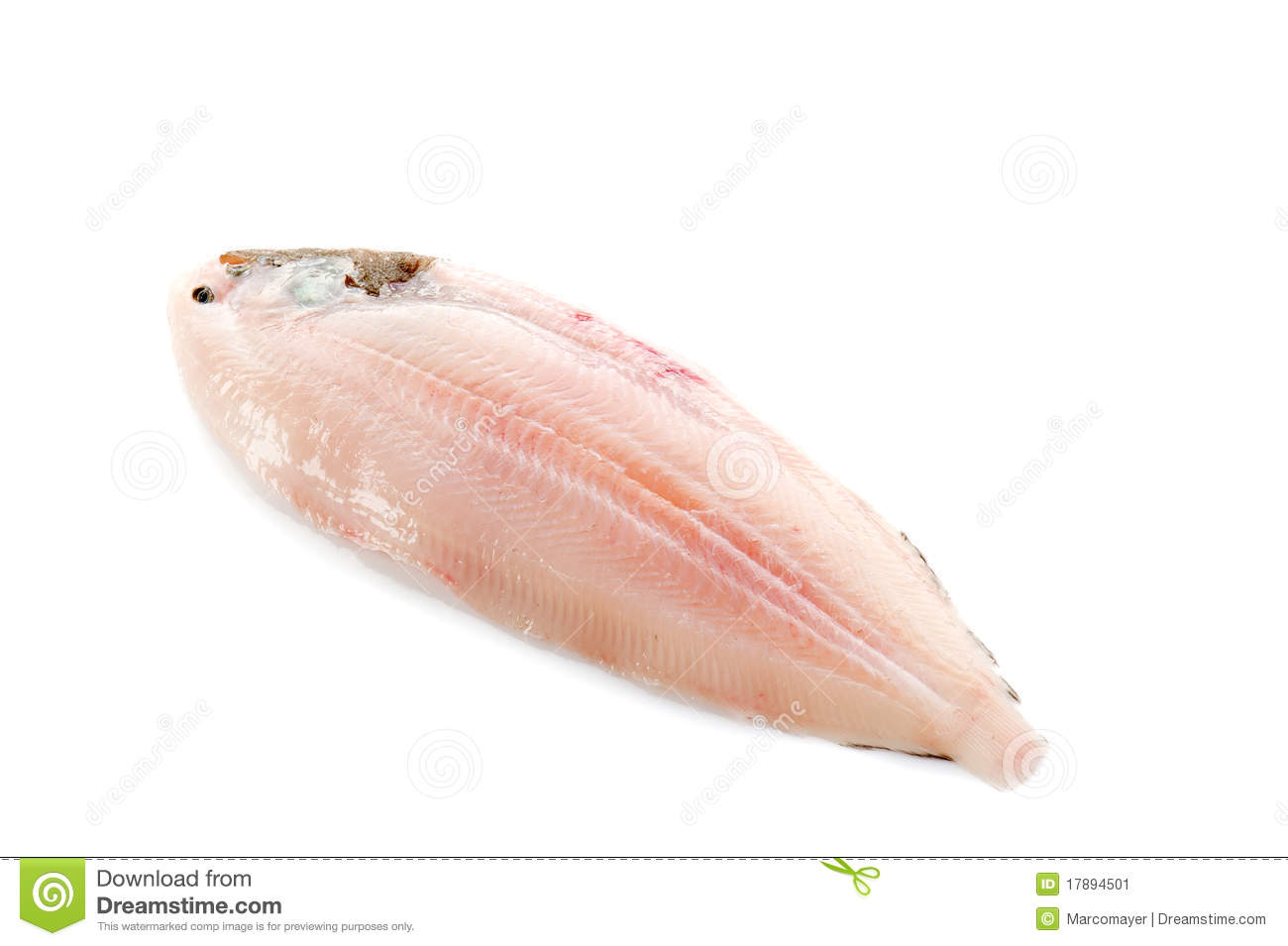 sole fish ready to cook stock image image of healthy
