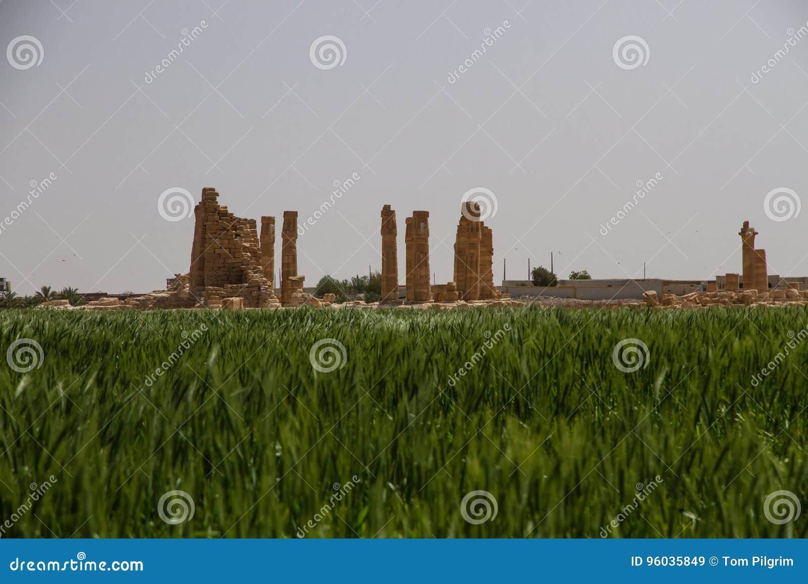Soleb Świątynny Sudan z naprzeciw pola