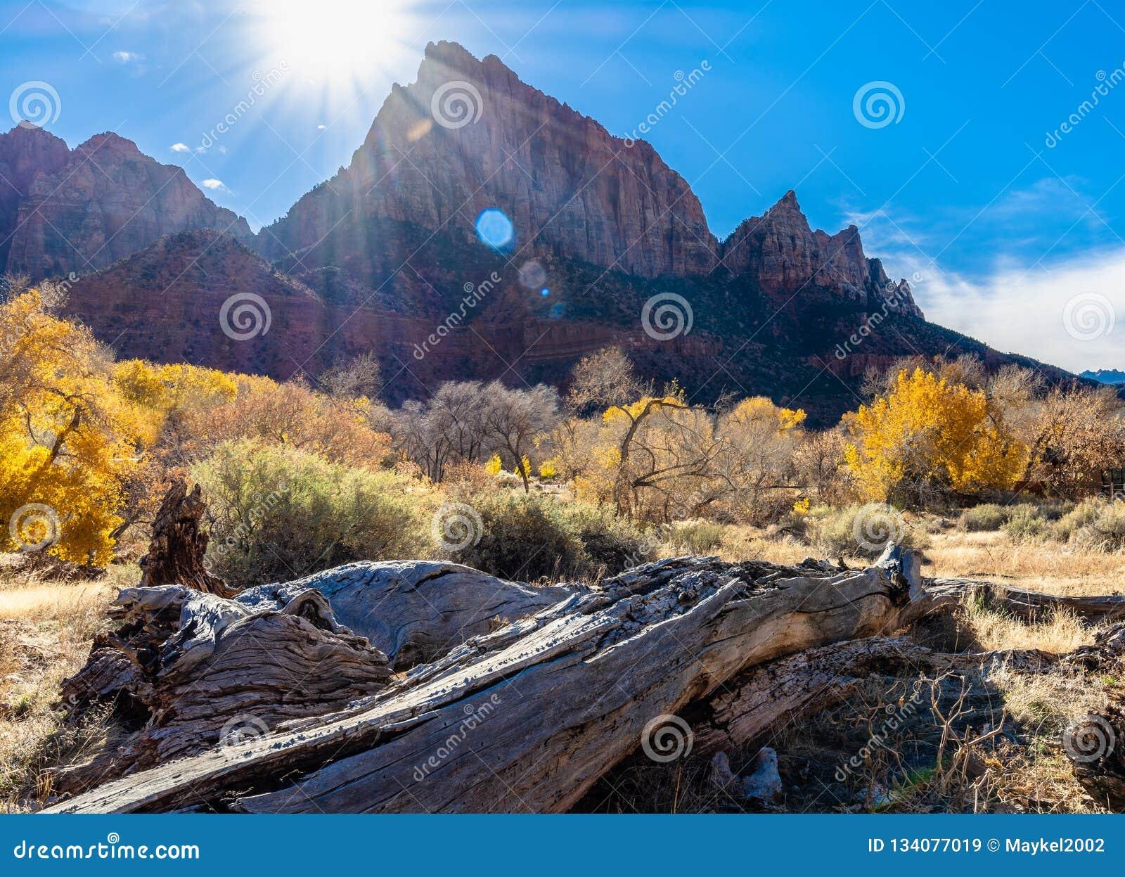 Soleil au parc national Zion