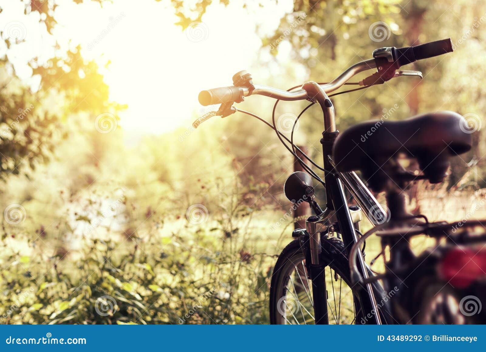Soleil et bicyclette debout à la nature