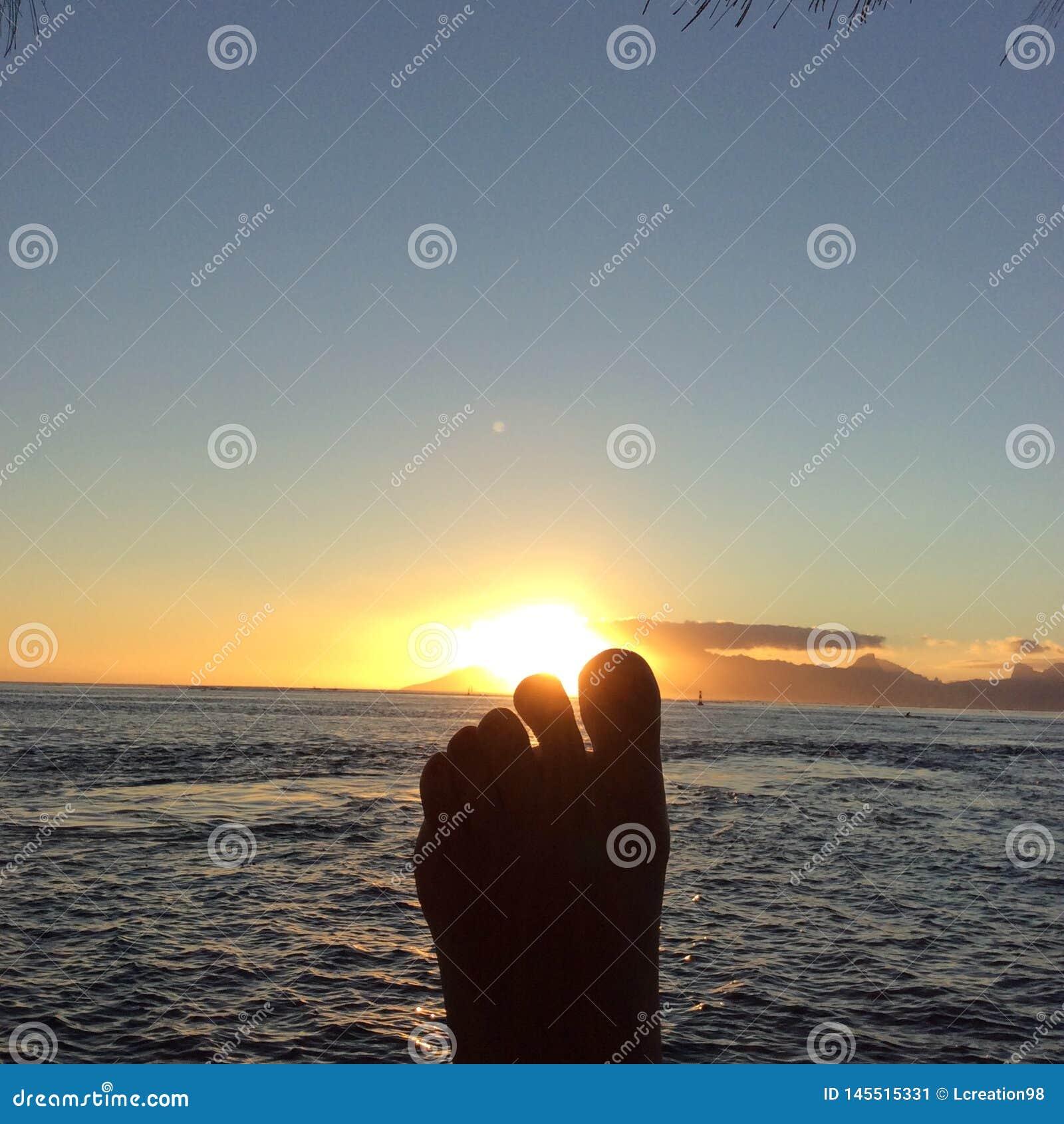 Soleil et pied