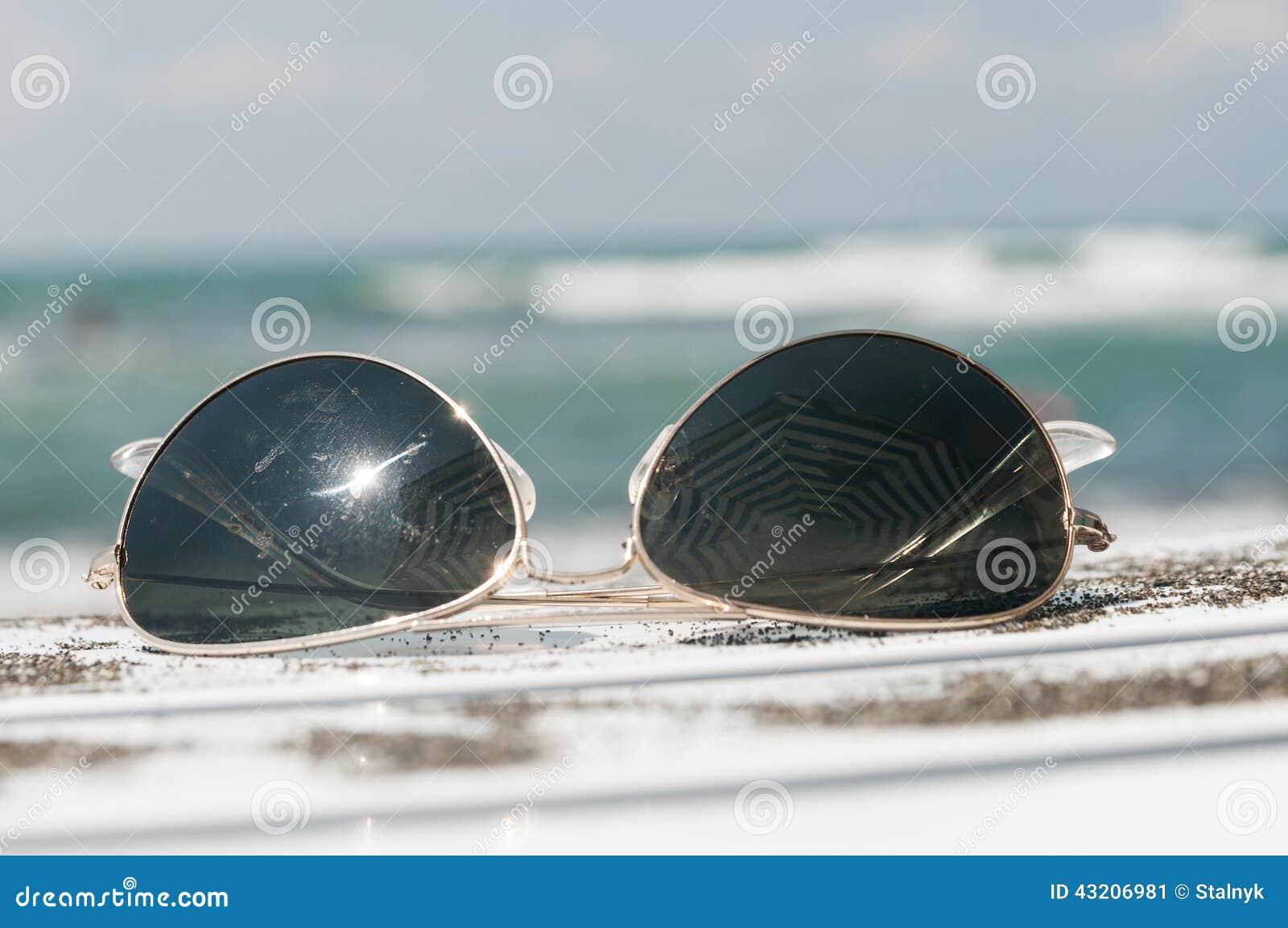 Download Solglasögon På En Dagdrivare Fotografering för Bildbyråer - Bild av lägen, guard: 43206981
