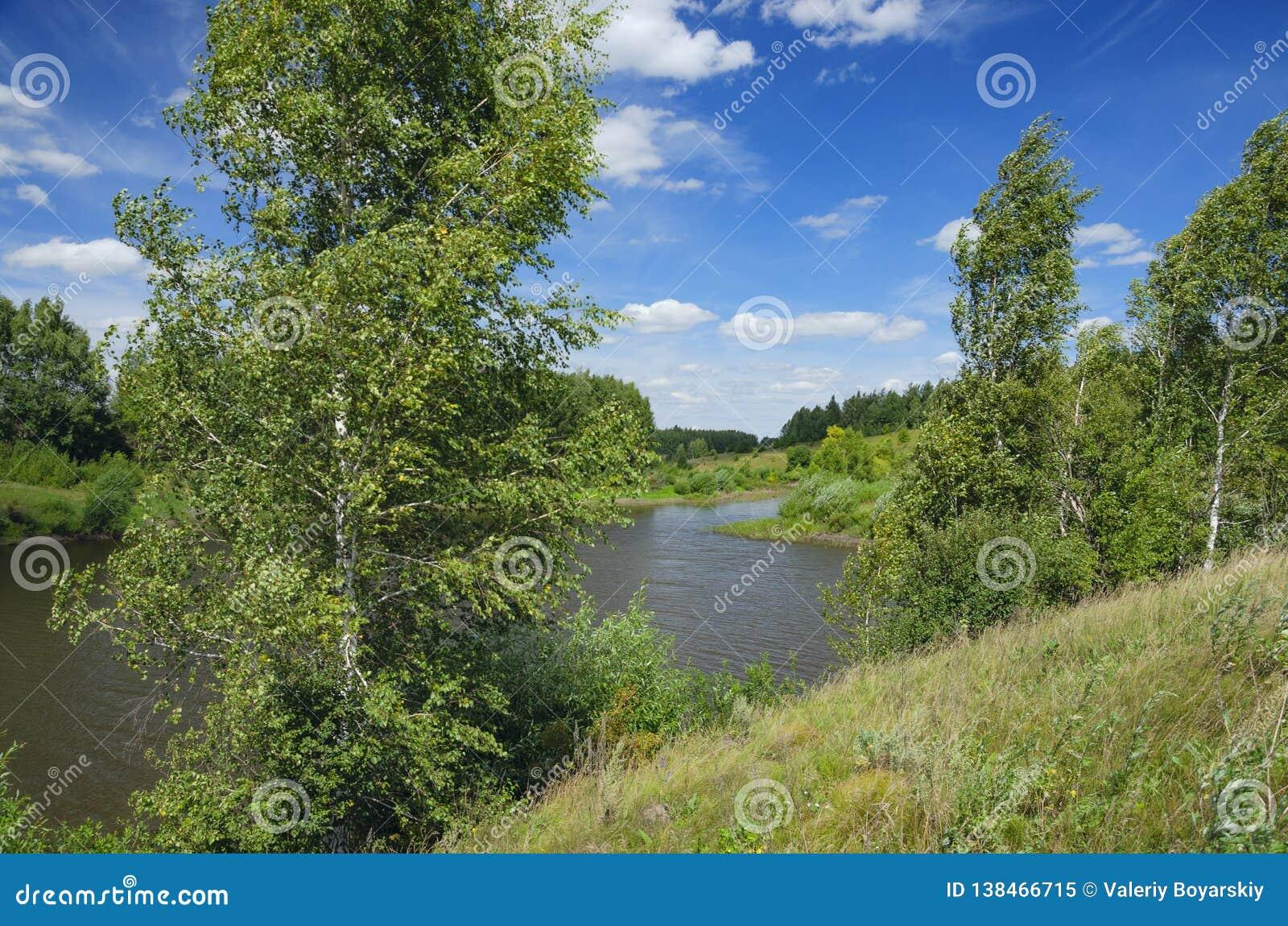 Soligt sommarlandskap med gröna kullar, floden, fält och avlägsna trän