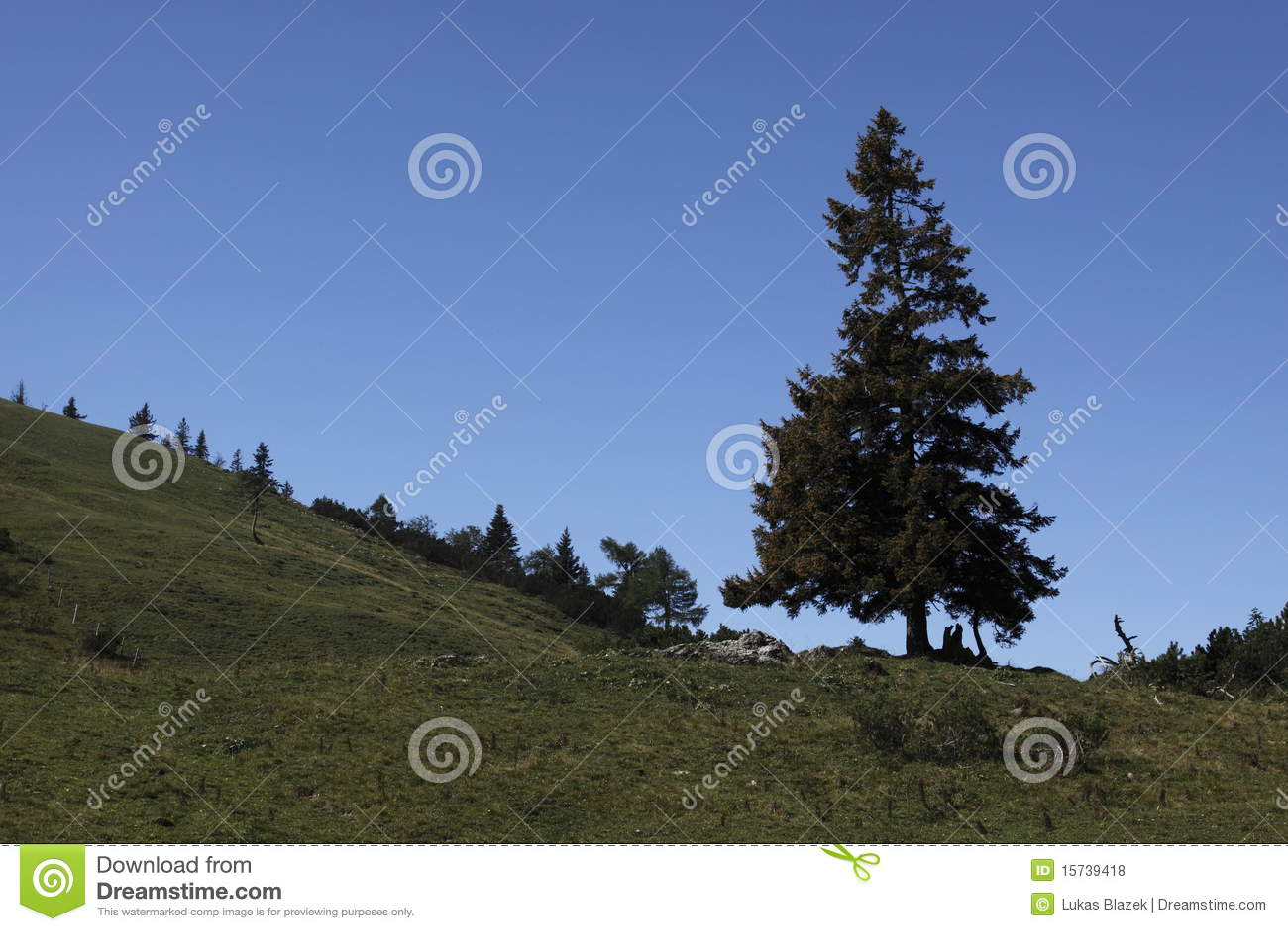 tree peaks solitaire