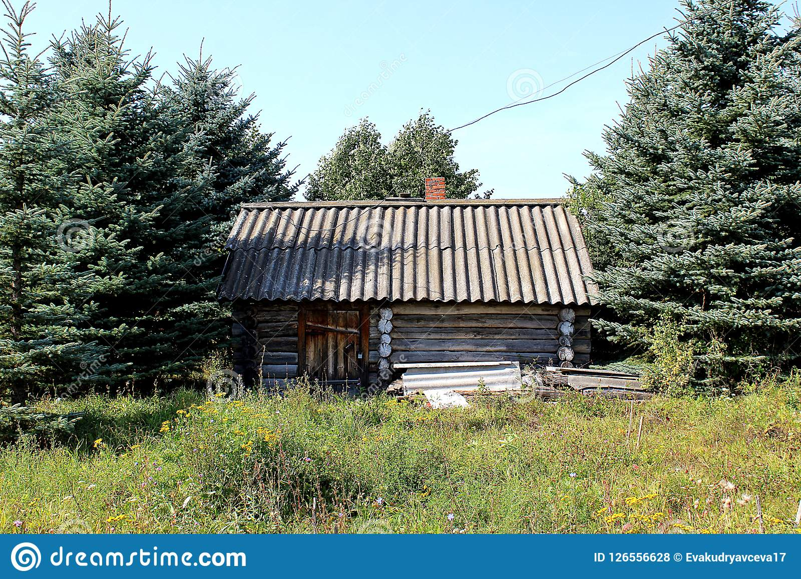 Miraculous A Solitary House Is In The Forest Stock Photo Image Of Download Free Architecture Designs Scobabritishbridgeorg