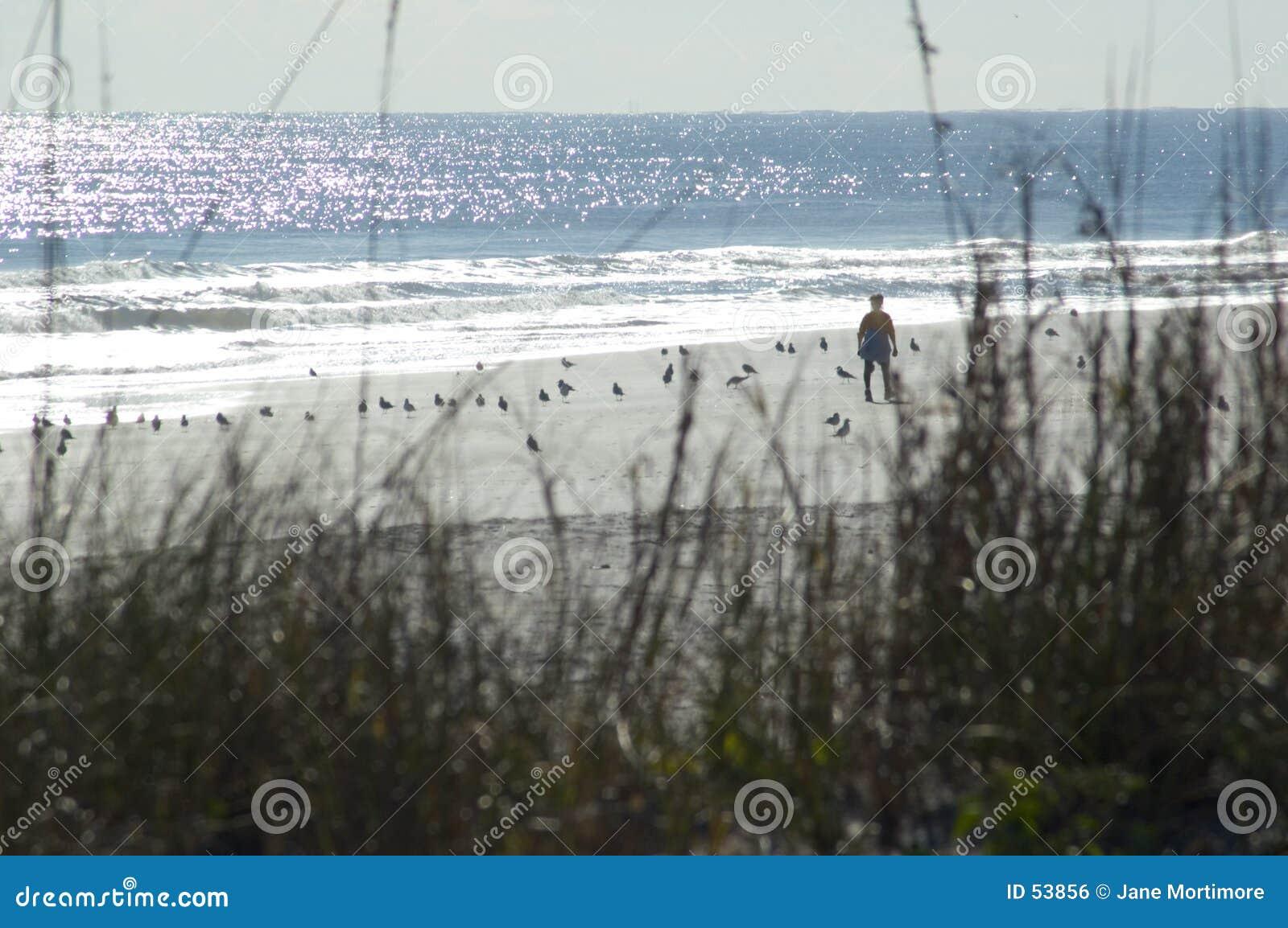 Download Solitude photo stock. Image du sable, réflexions, abandonné - 53856